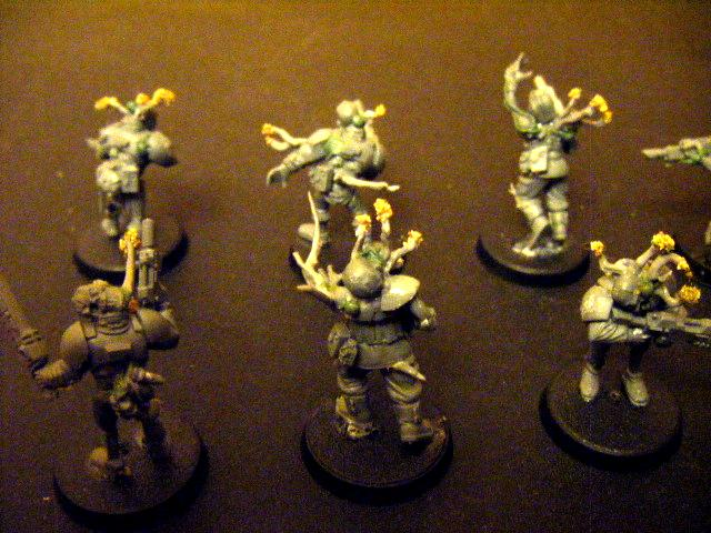 Imperial Guard including but not limited to Halo Flood