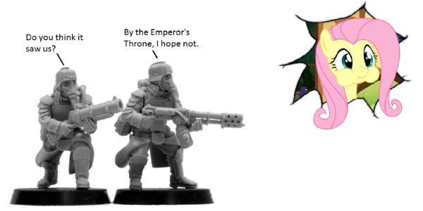 Death Korps Of Krieg Meme death korps of krieg, fluttershy, humor ...