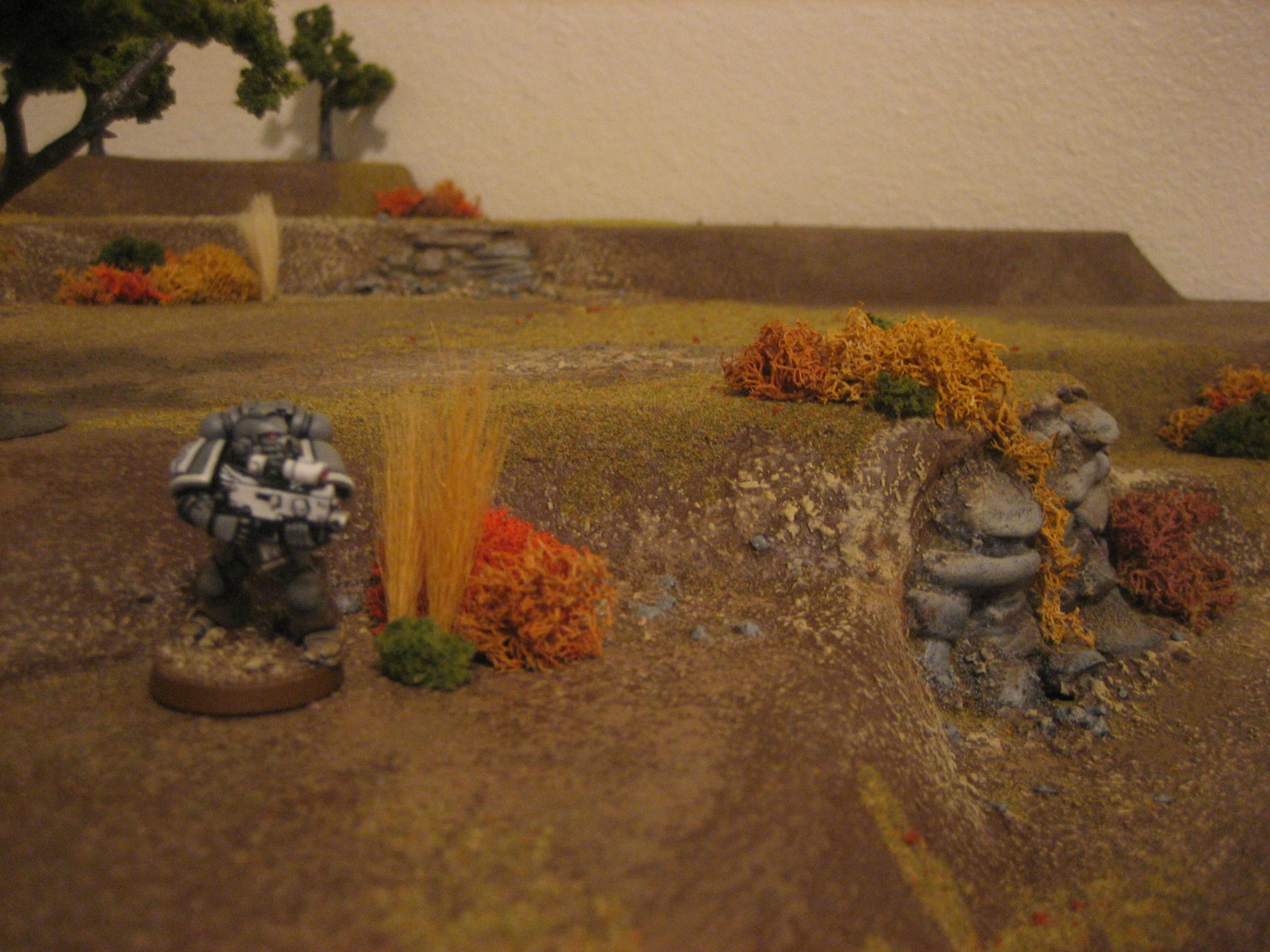 Autumn, Foliage, Game Table, Grass, Hills, Terrain