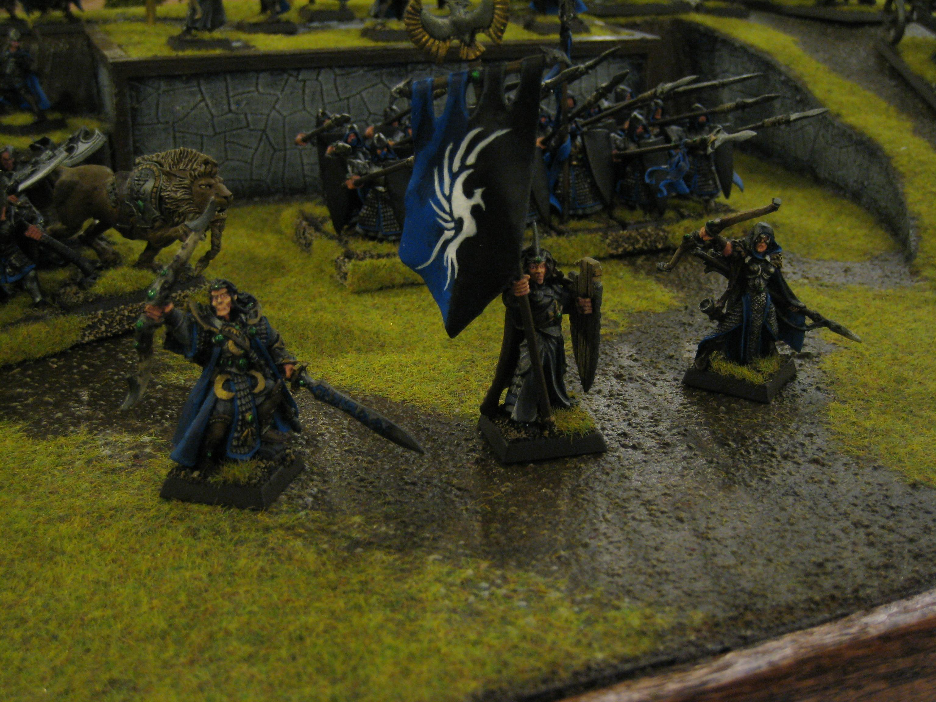 Adepticon, Hero, High Elves, Standard Bearer, Warhammer Fantasy
