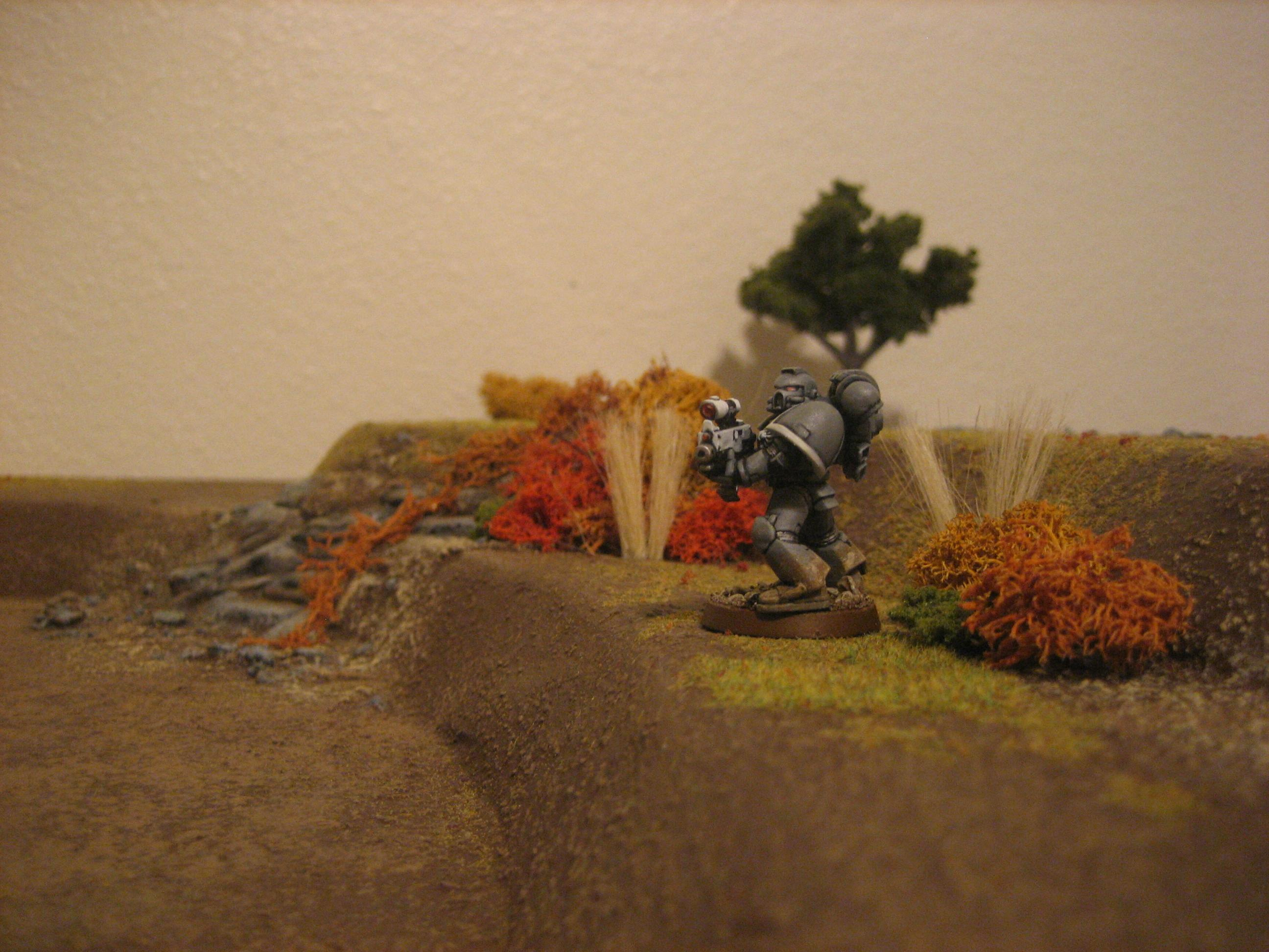 Autumn, Foliage, Game Table, Hills, Terrain