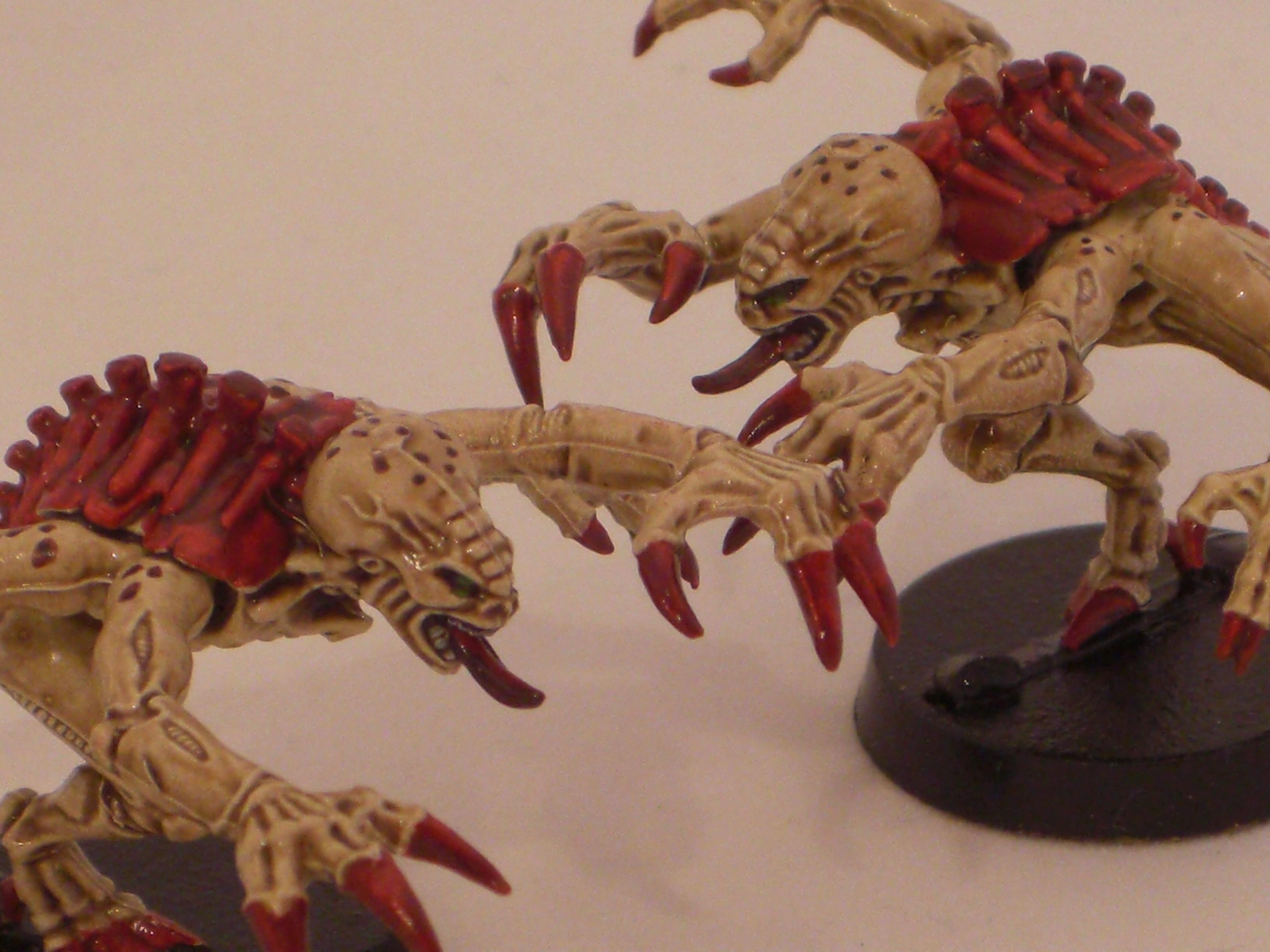Dipped, Genestealer, Tyranids, Warhammer 40,000
