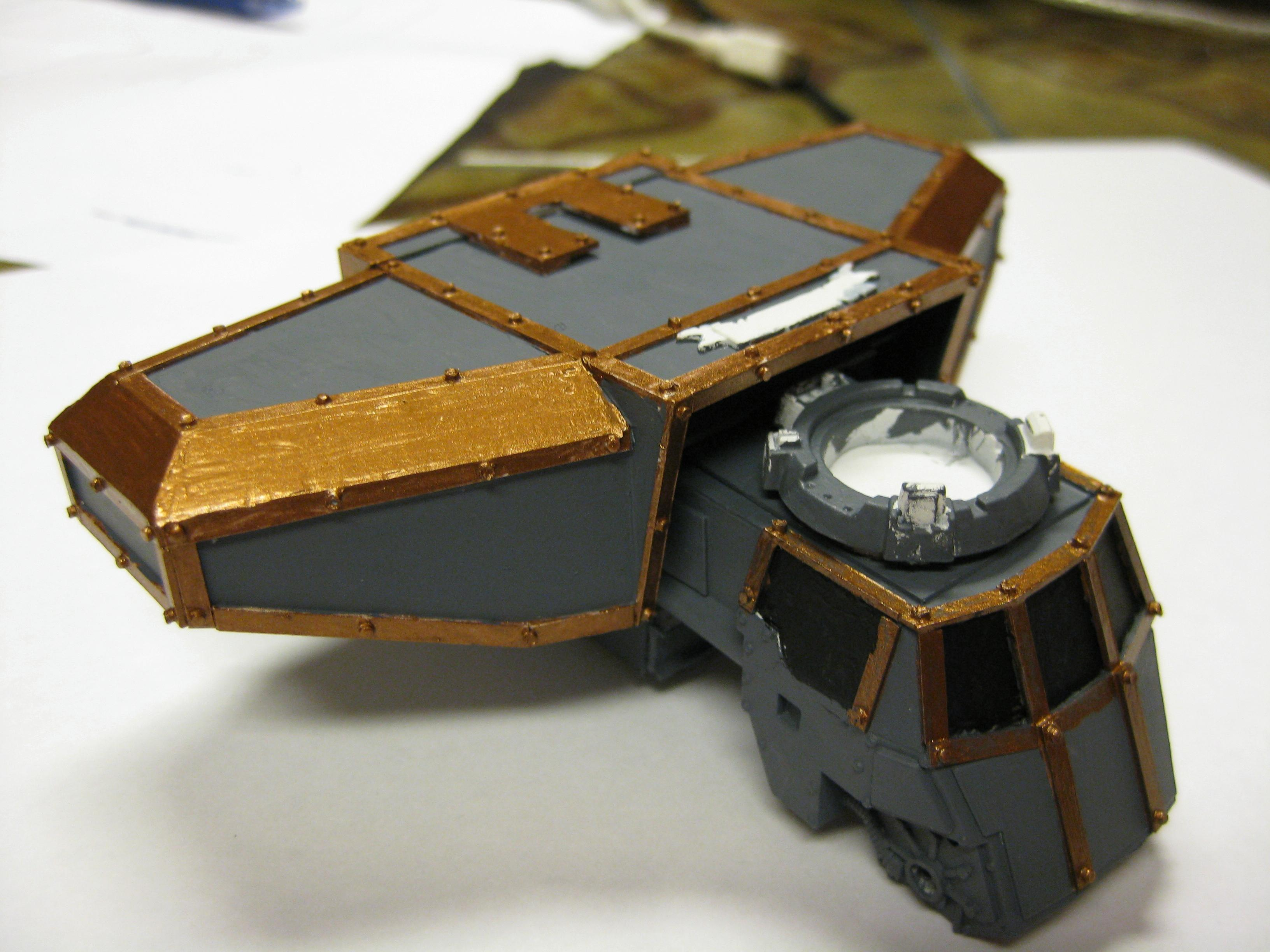 Overview of the carapace