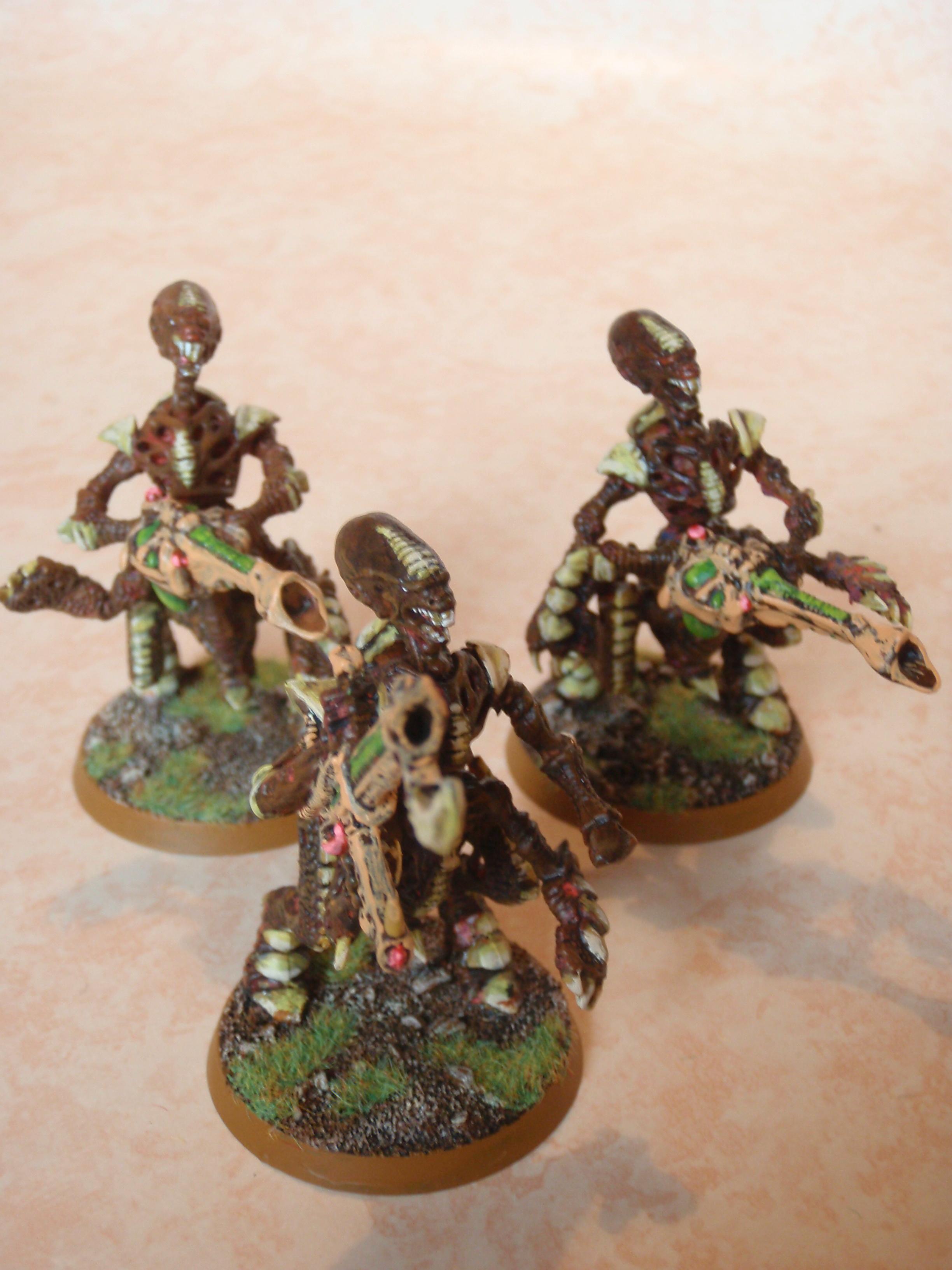 Tyranids, Warriors, Classic warriors