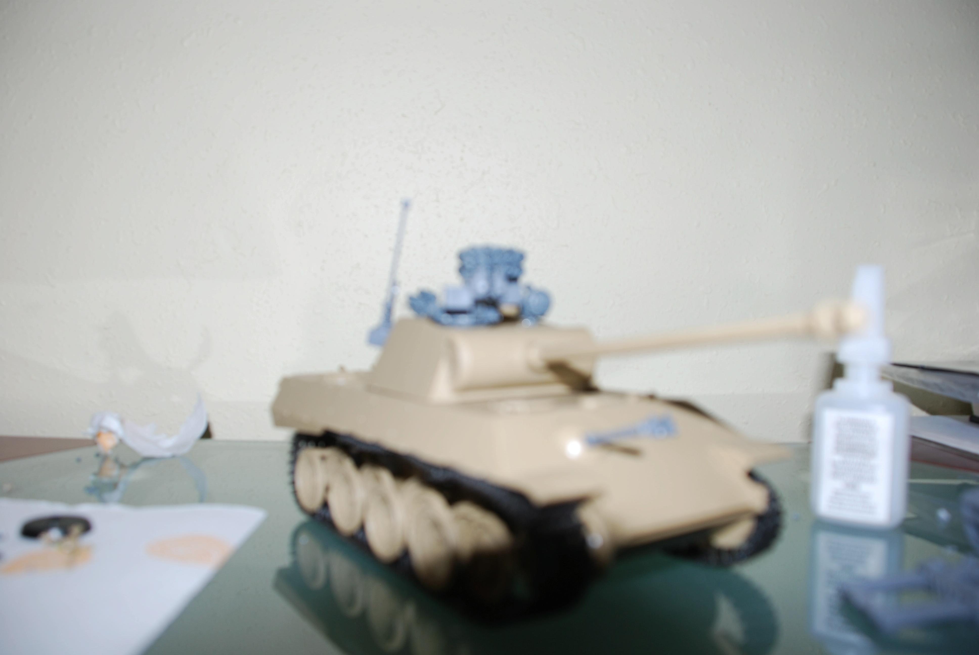 Blurred Photo, Panther model front