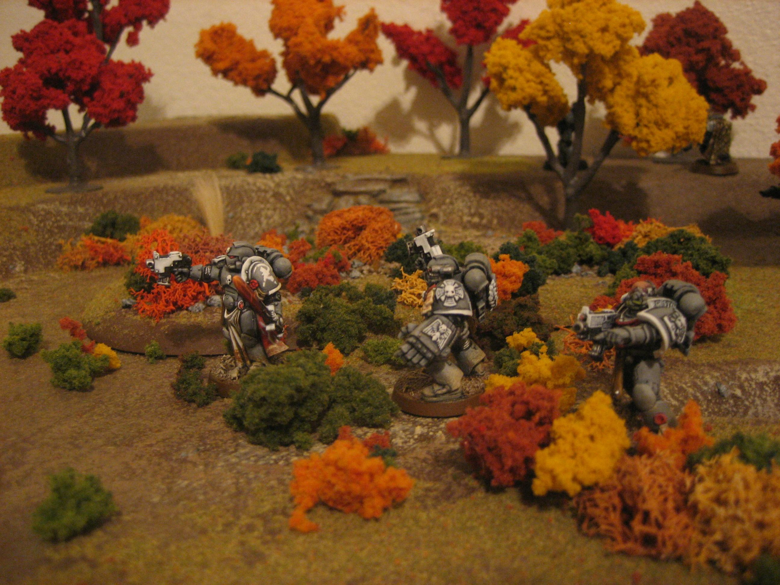 Autumn, Space Marines, Terrain, Warhammer 40,000