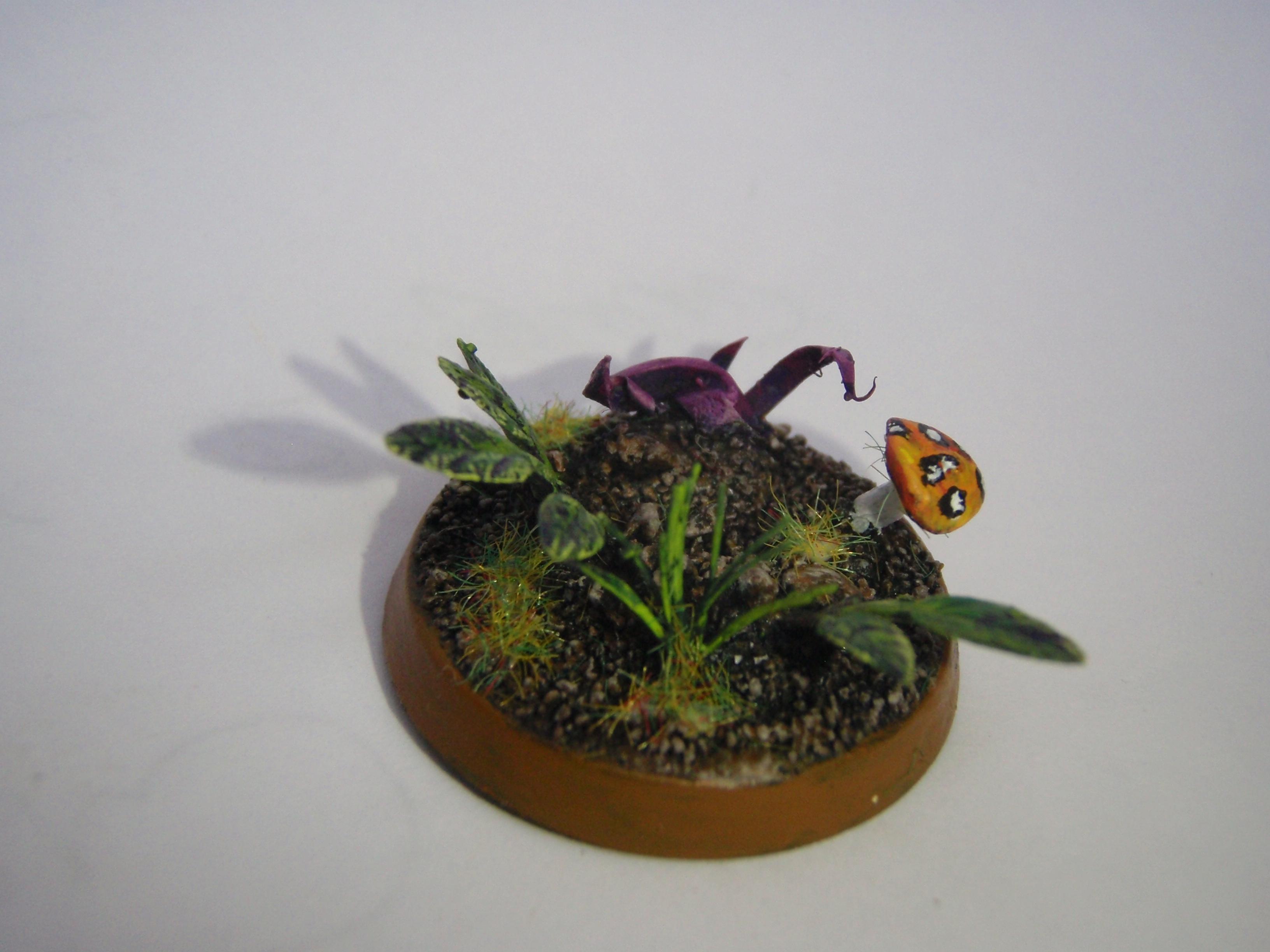 Base, Jungle, Mushroom