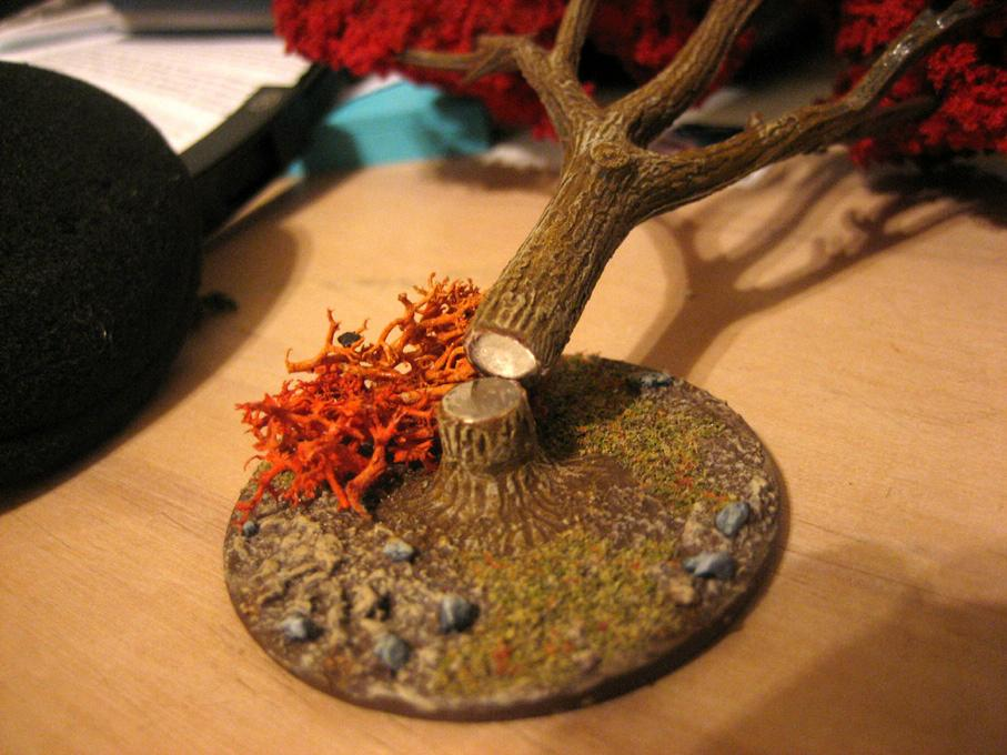 Autumn, Magnet, Terrain, Trees