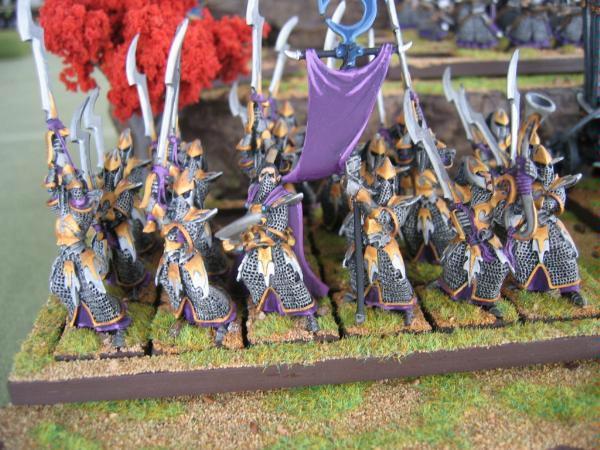 Dark Elves, Executioners, Warhammer Fantasy