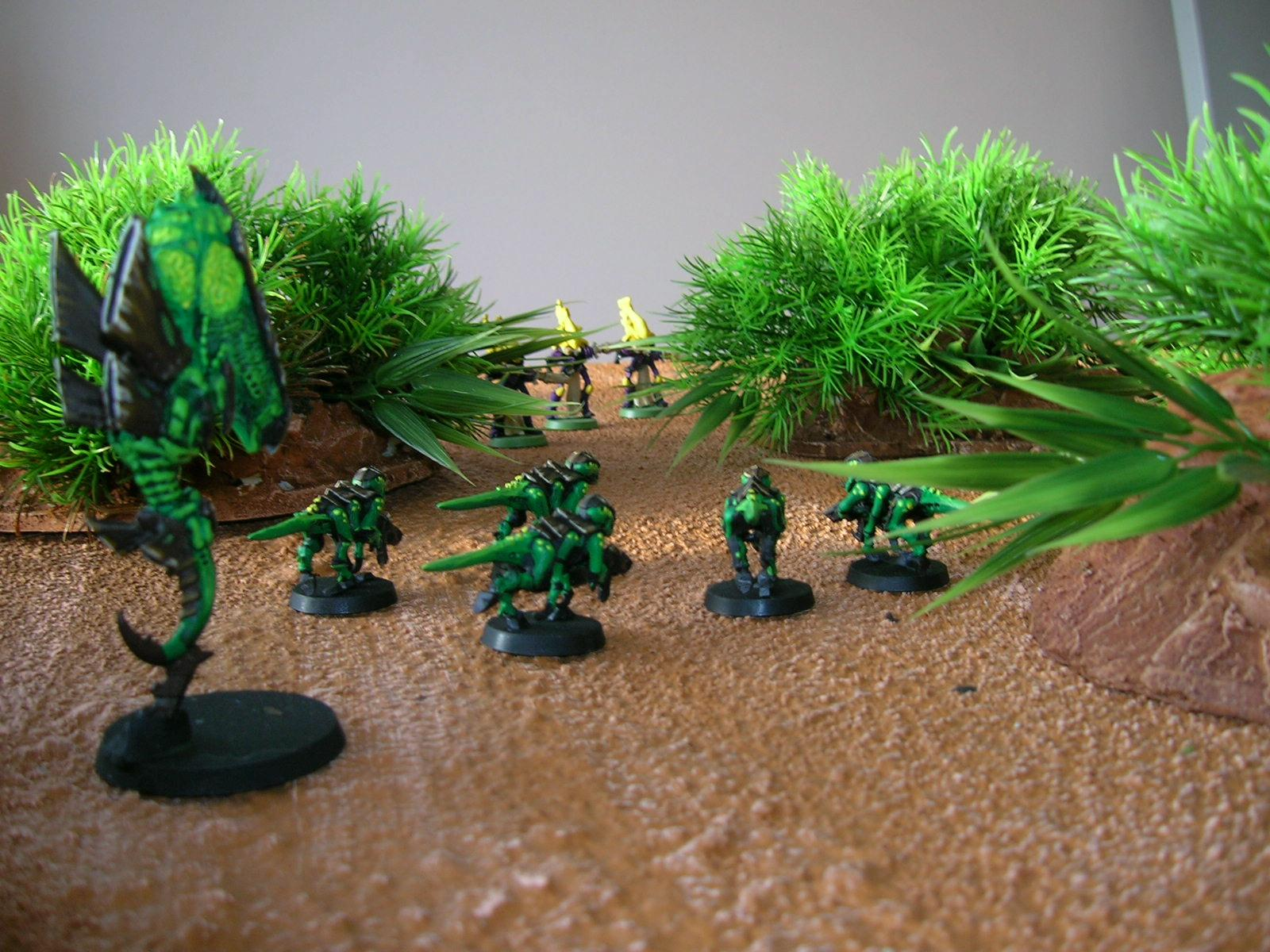 Jungle, Terrain, same hills with termagaunts, zoanthrope and a few Wraithguard
