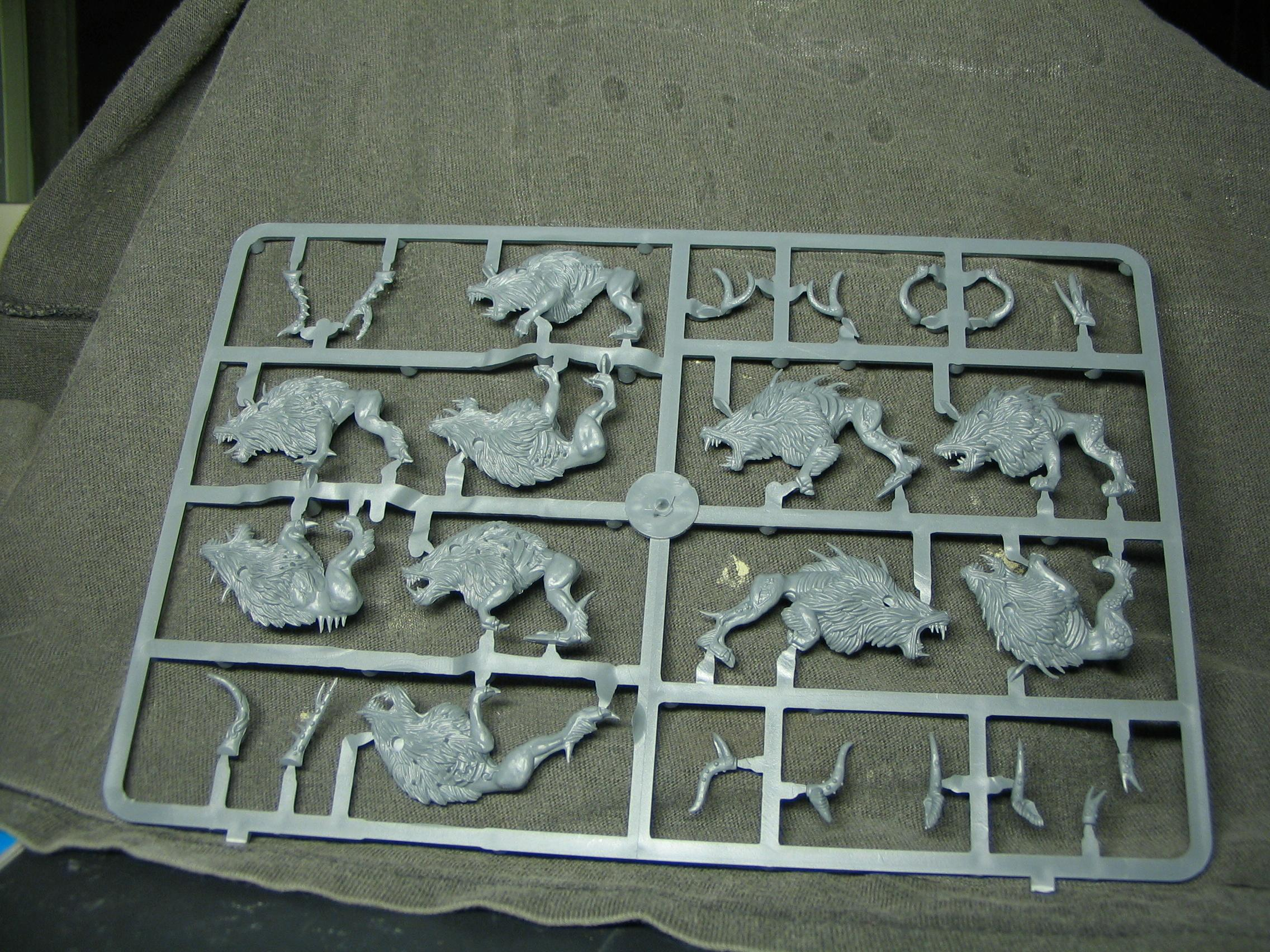 Core, Games Workshop, Sprue, Warhammer Fantasy, Warriors Of Chaos, Wolves