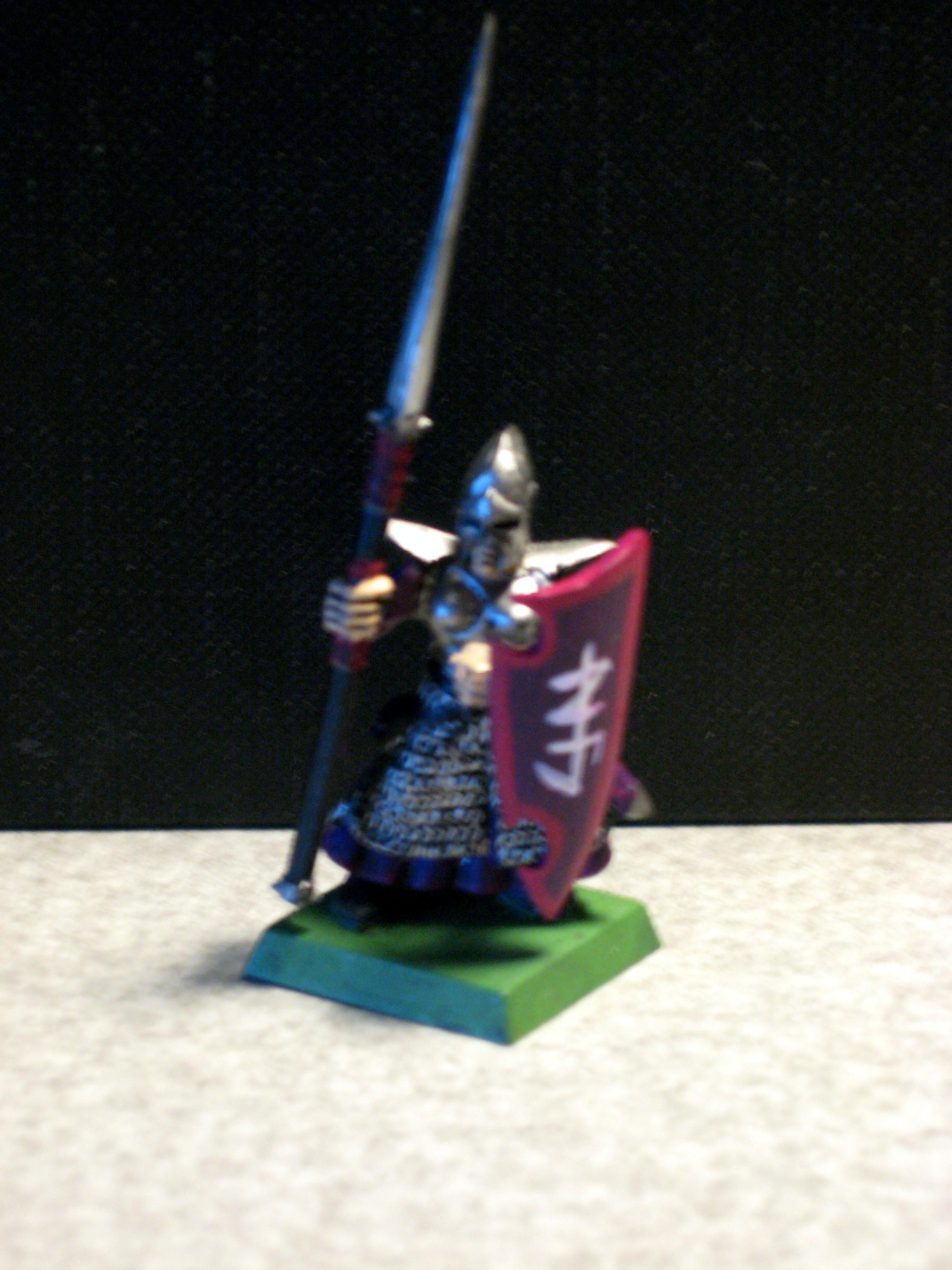 Dark Elves, Dark Elf Warrior