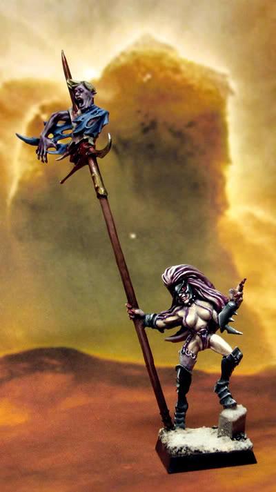 Beastmaster, Dark Elves, Warhammer Fantasy