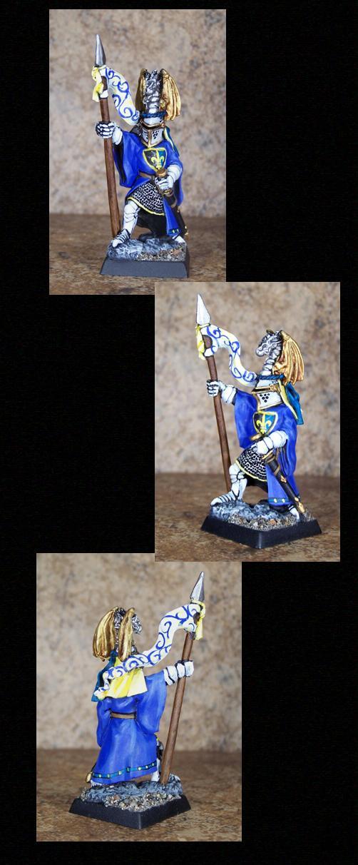 Bretonnians, Knights, Pathfinders, Pro Painted, Reaper, Reaper Miniatures, Reaper Minis, Rpg, Warhammer Fantasy