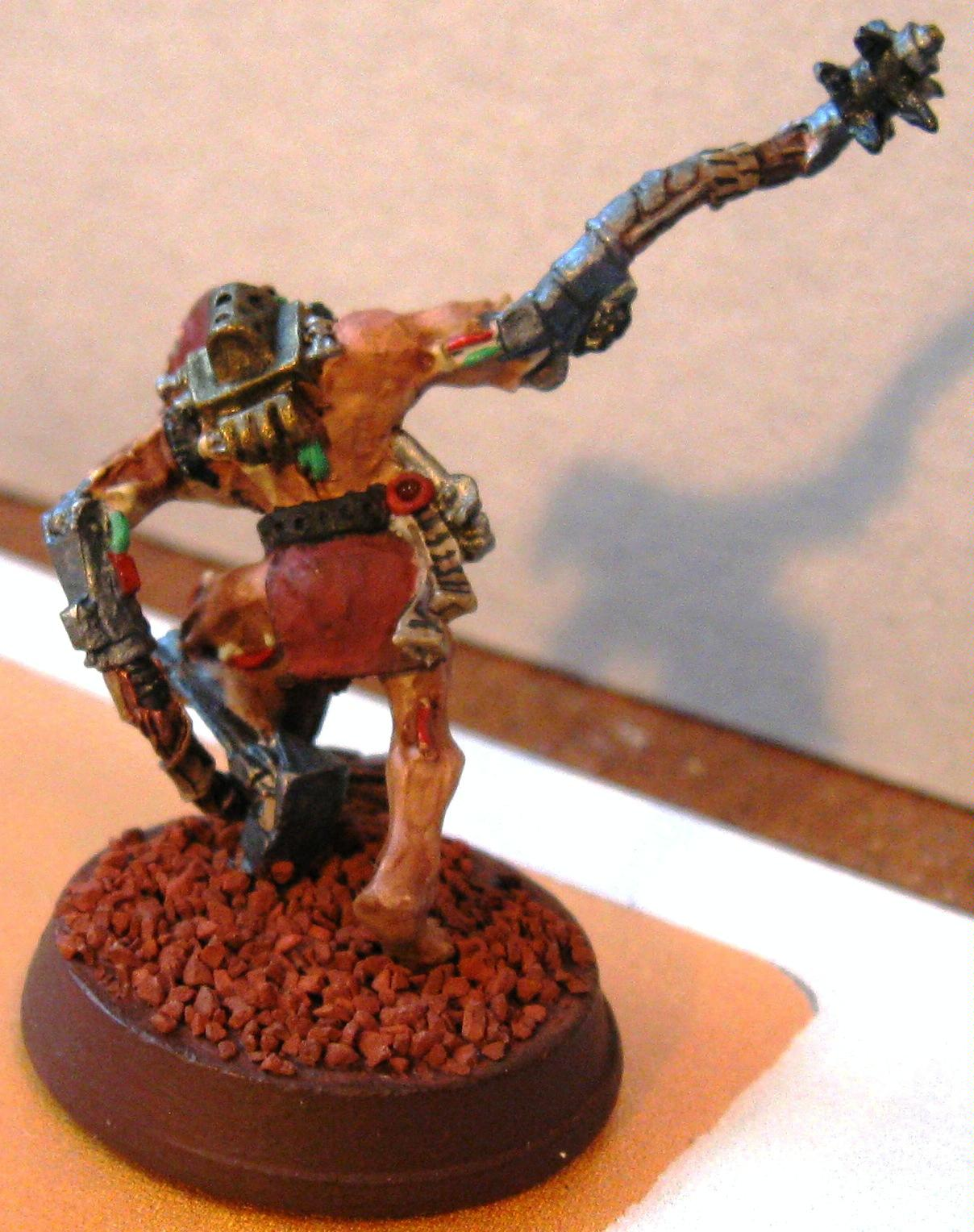 Witch Hunters, Arco-Flagallent Rear