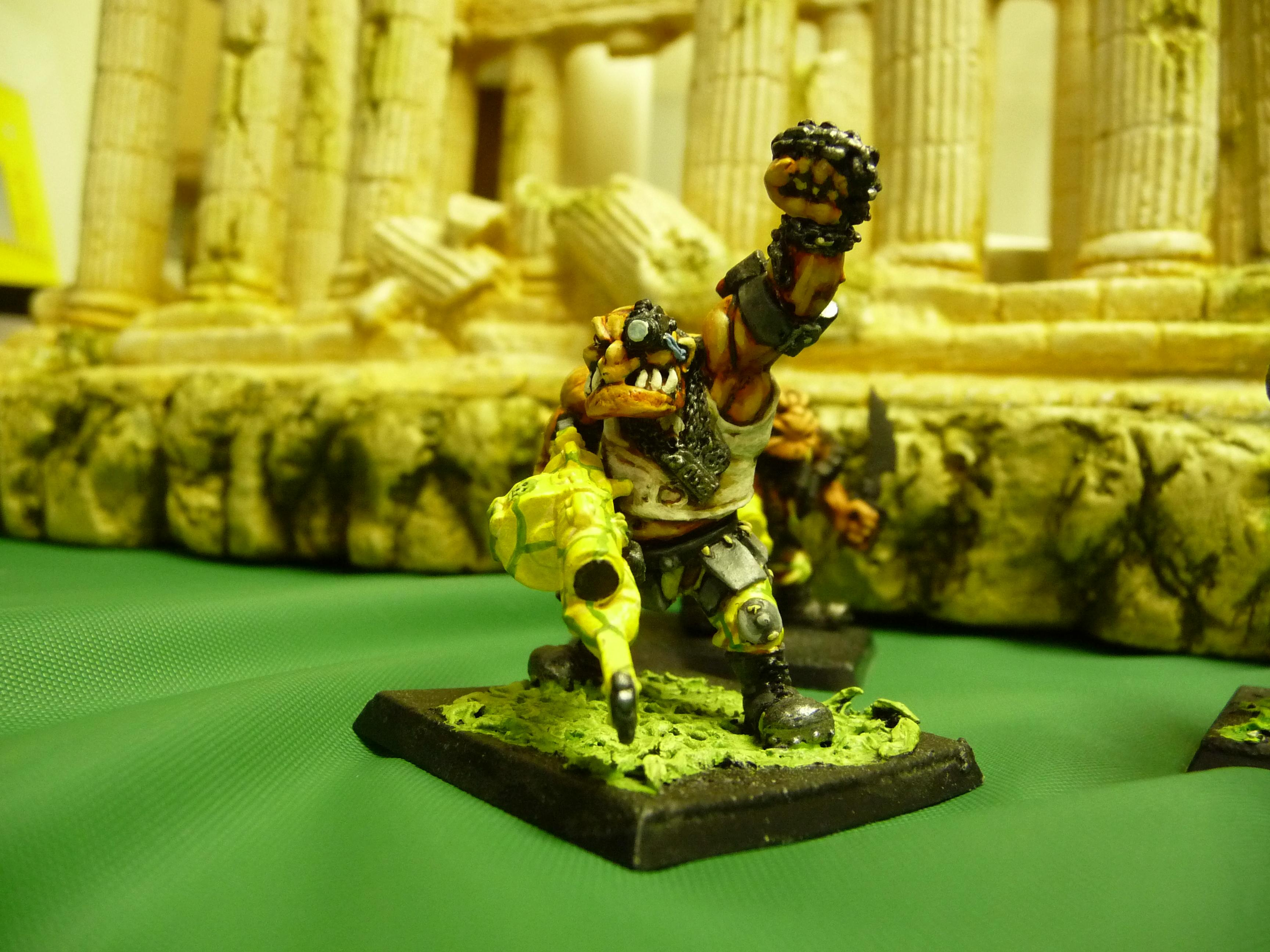 another view of ogryn