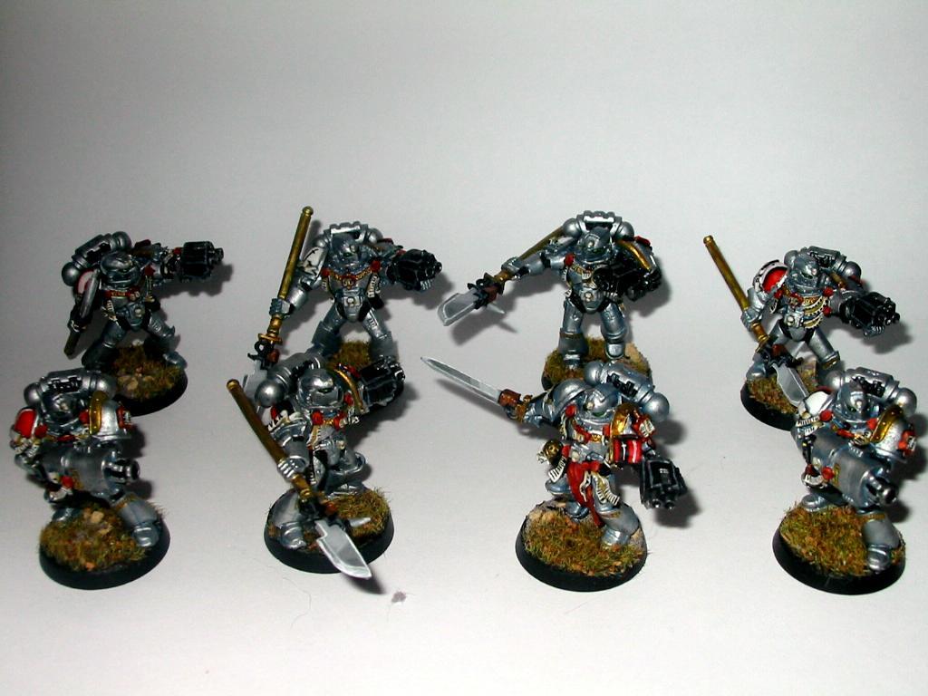 8x Grey Knights w/2 psycannon