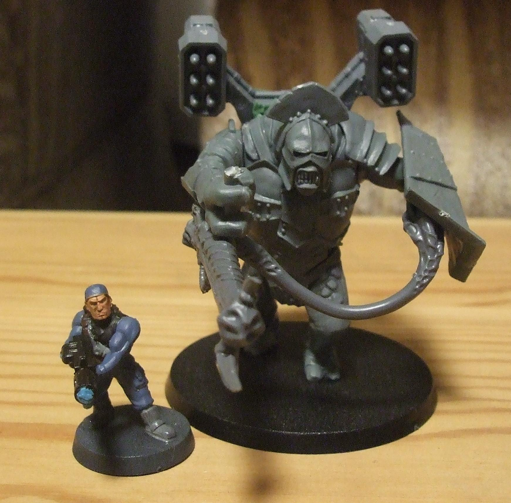 Carnifex, Genestealer Cult, Lord Of The Rings, Servitors, Troll