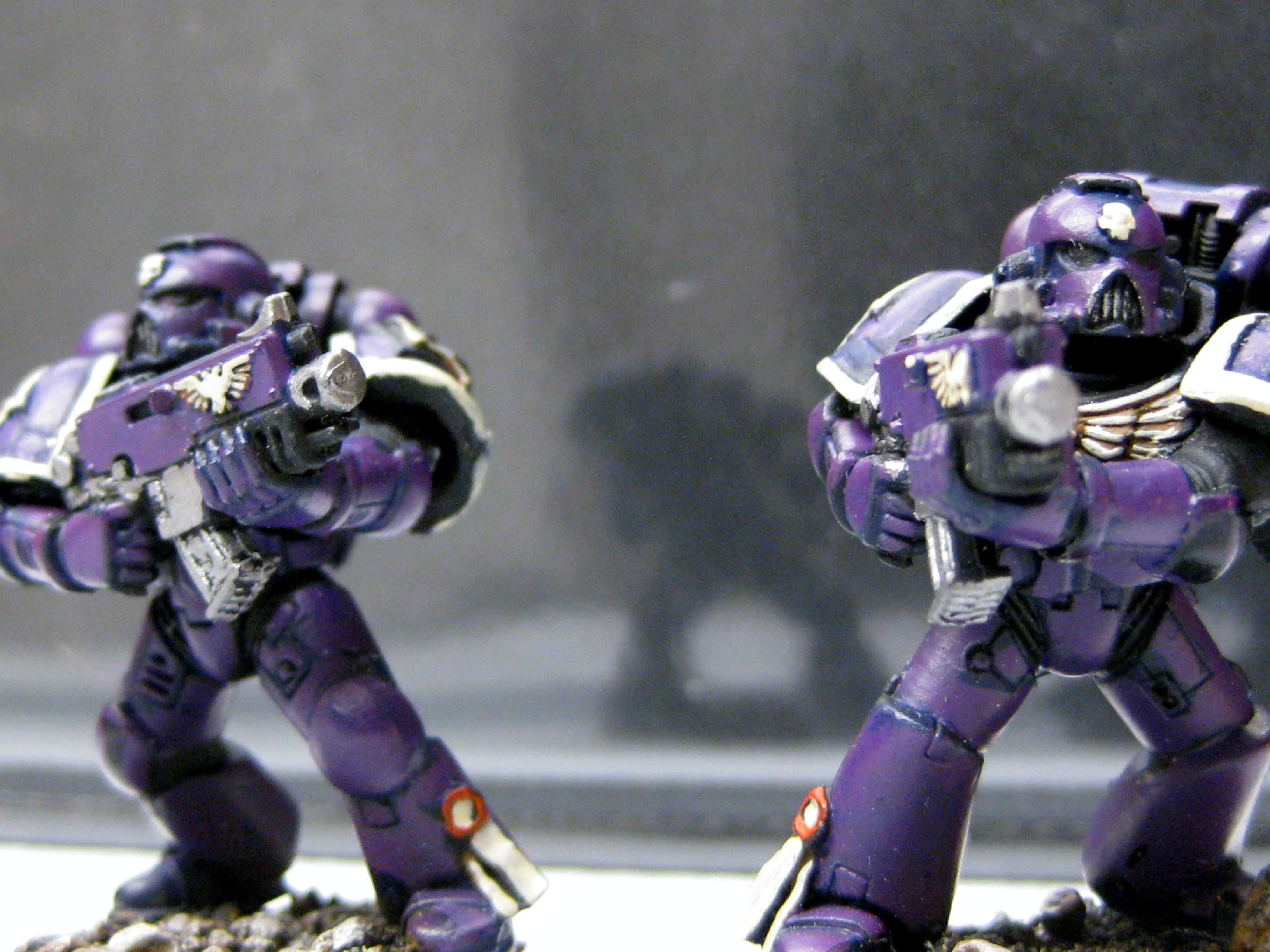 Space Marines, Tactical Marines