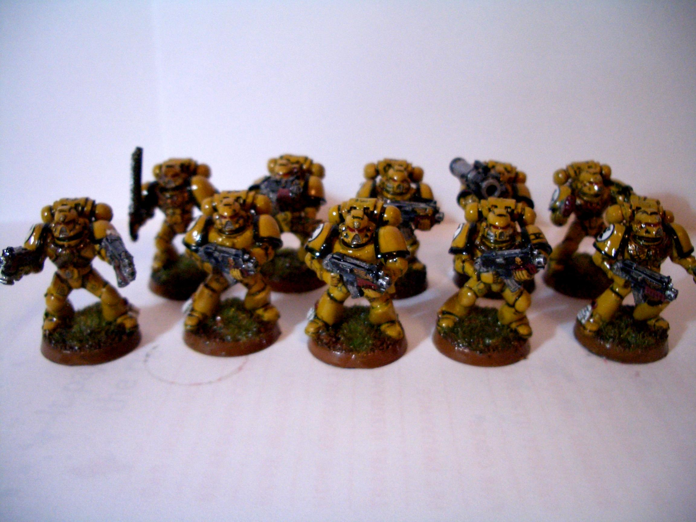 Imperial Fists, Work In Progress, Yellow Space Marines