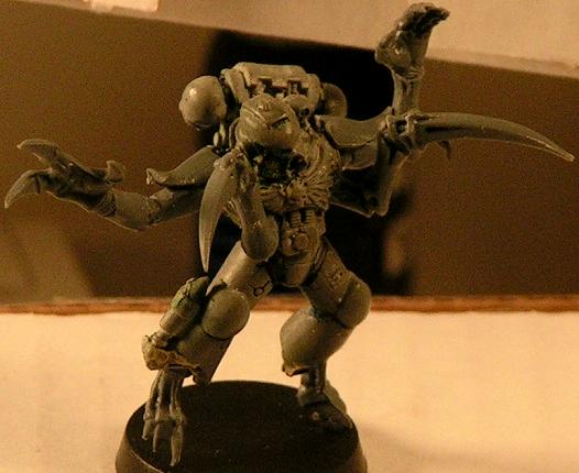 Space Marines, Tyranids, Warhammer 40,000