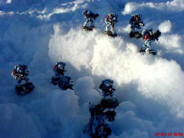 Arctic, Snow, Space Wolves