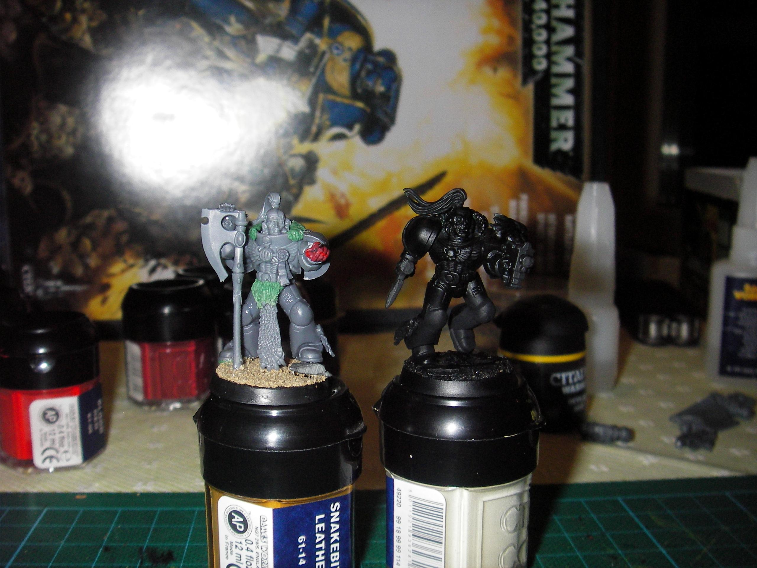 Diy Chapter, Lion, Space Marines