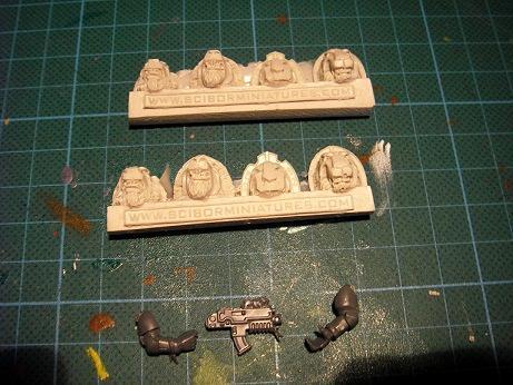 Lion, Scibor, Shoulderpads