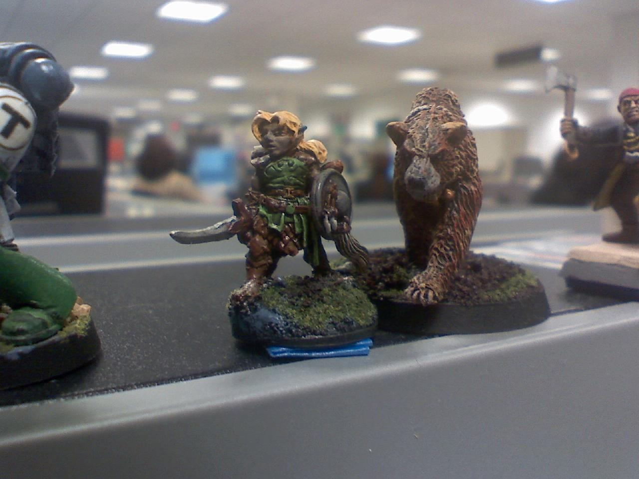 Bear, Brown, Character, Druid, Gnome, Green, Leather, Reaper, Shield, Sickle, Warhammer 40,000, Warhammer Fantasy