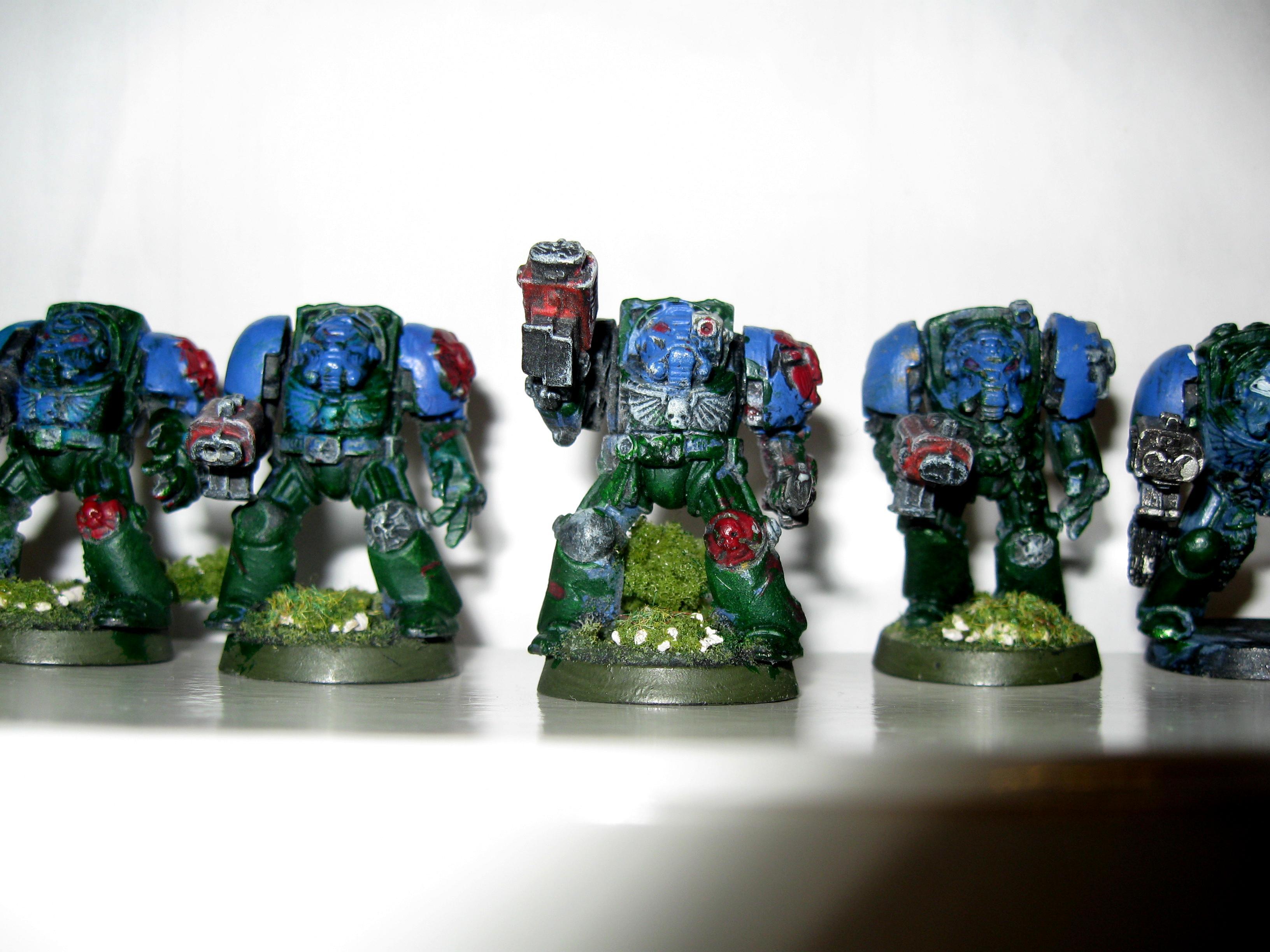 22nd Company Terminators WIP