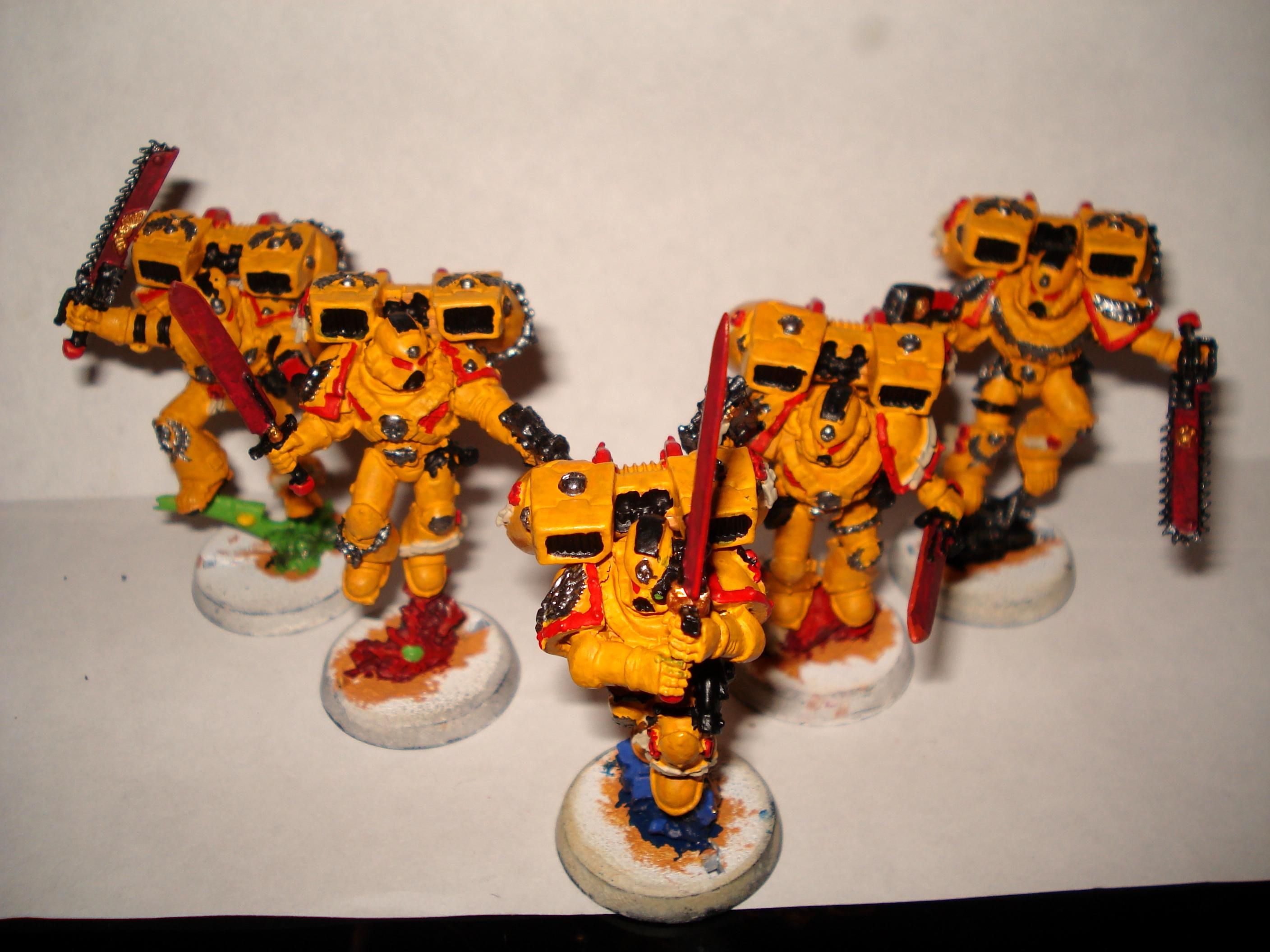 Imperial Fists, Space Marines, Vanguard