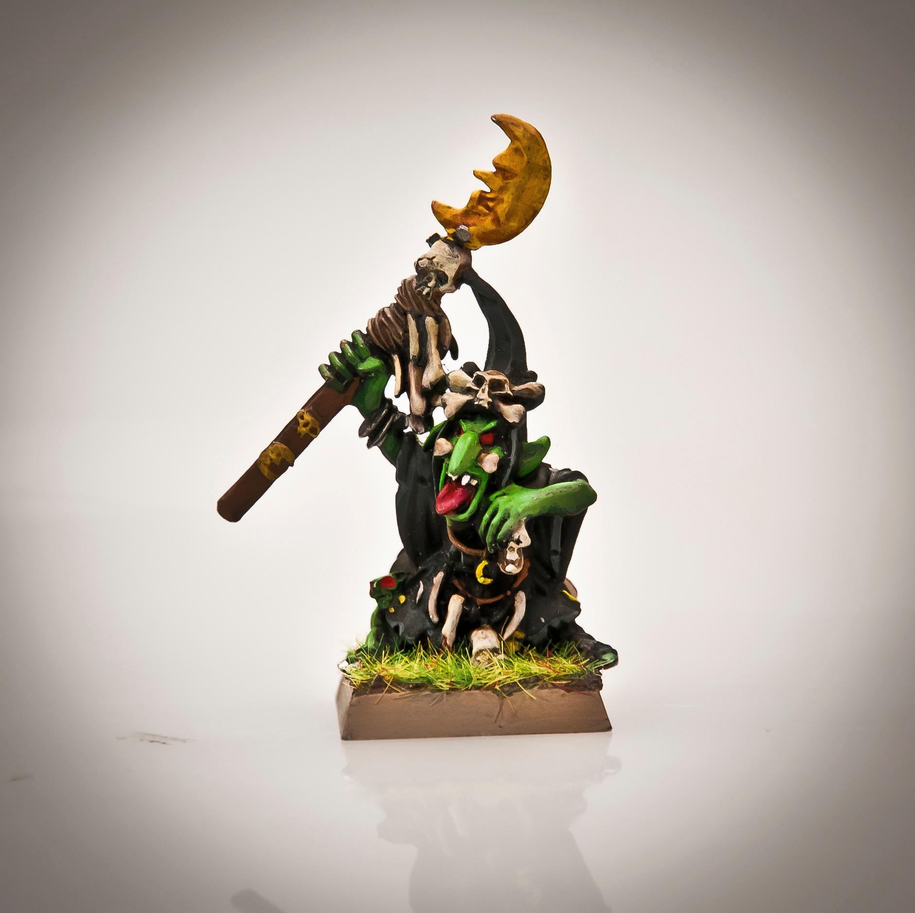 Goblins, Night Goblins, Shaman, Warhammer Fantasy