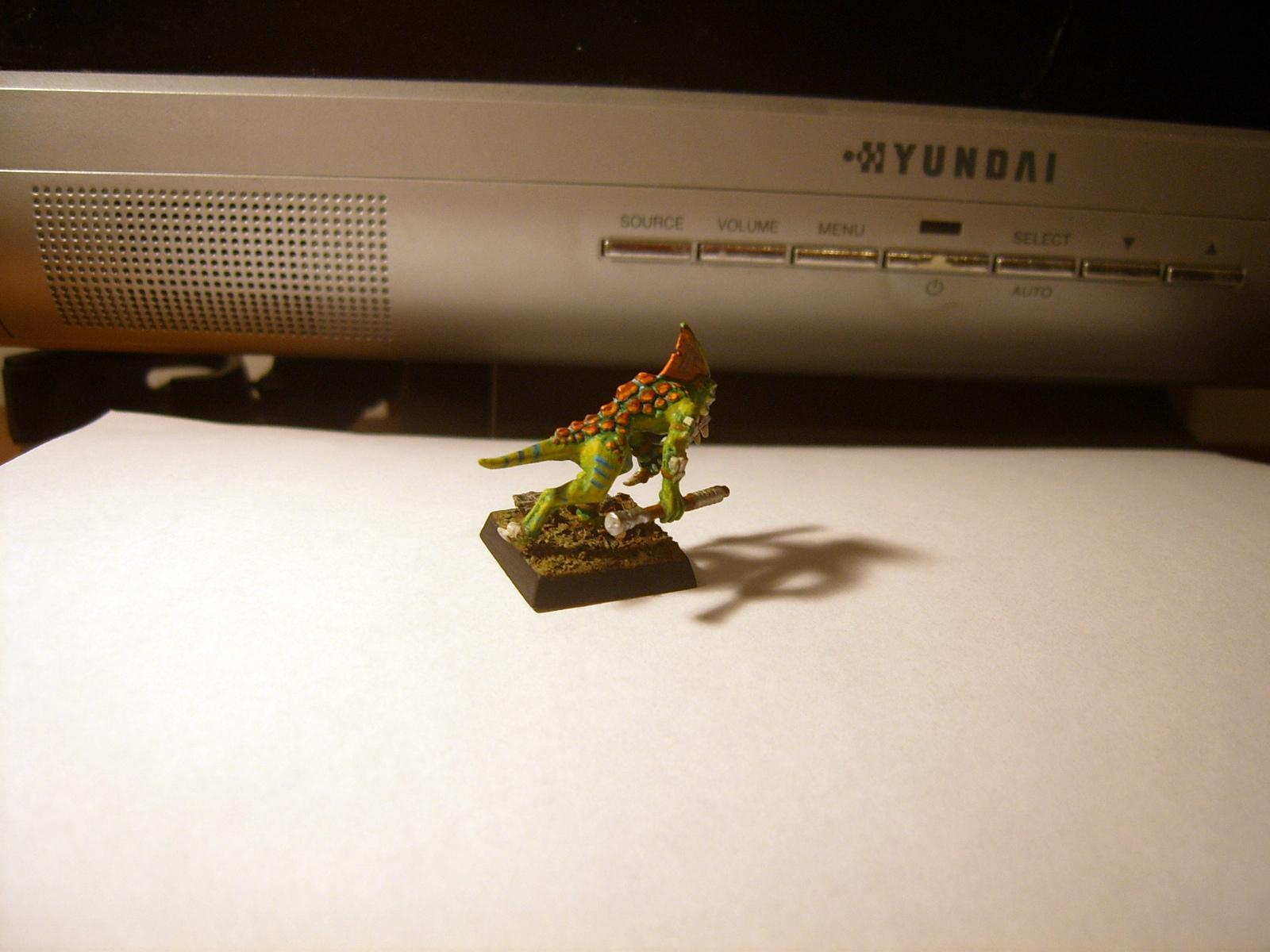 Lizard, Lizardmen, Man, Skinks, Warhammer Fantasy