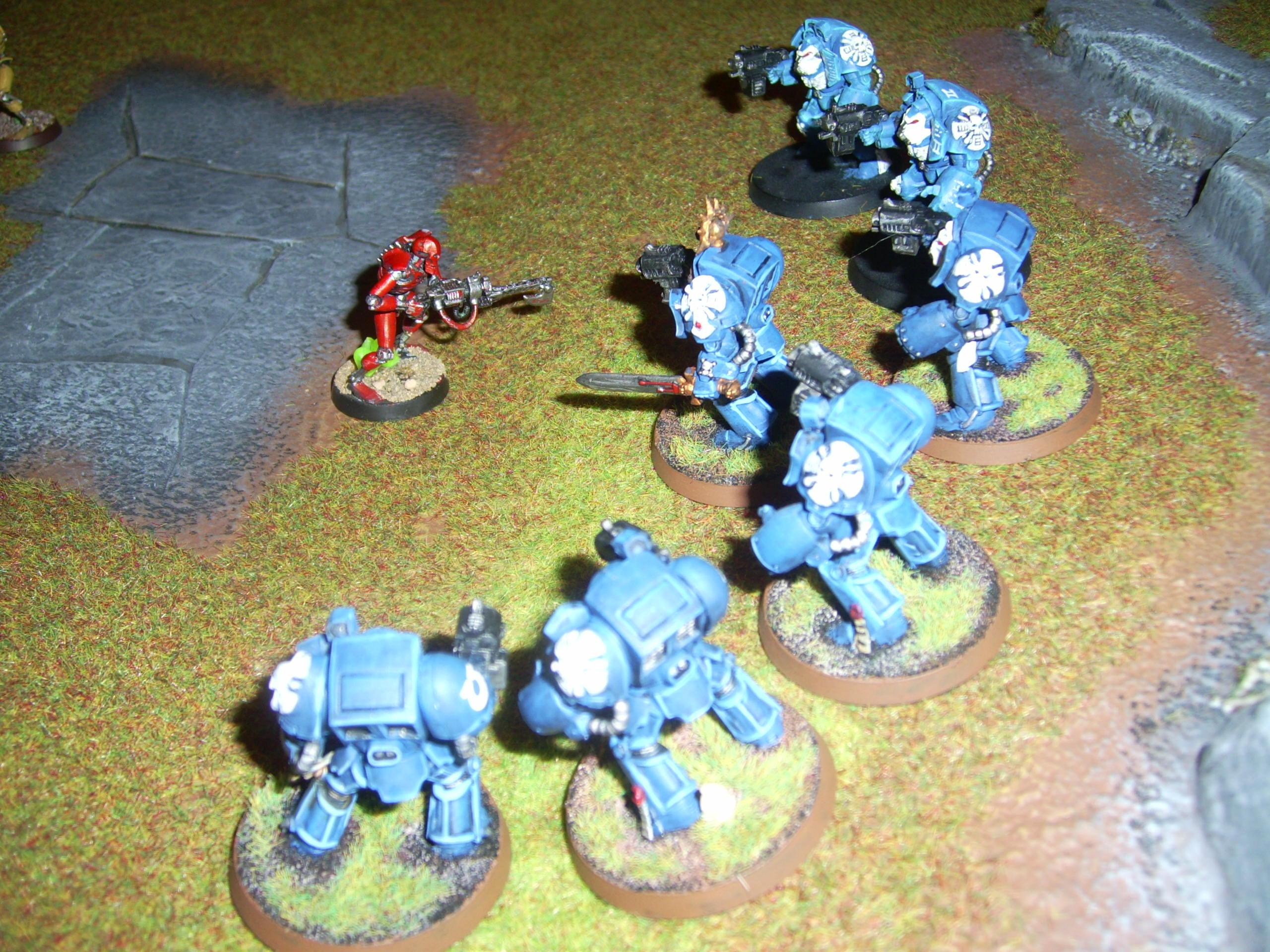 Death Or Glory, Necrons, Red, Space Marine Terminators And Necron, Space Marines, Terminator Armor, Ultramarines
