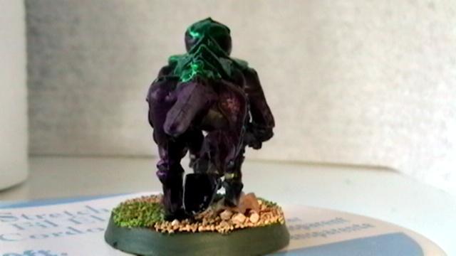 bug rear