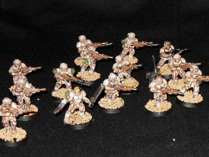 Cadians, Desert, Imperial Guard