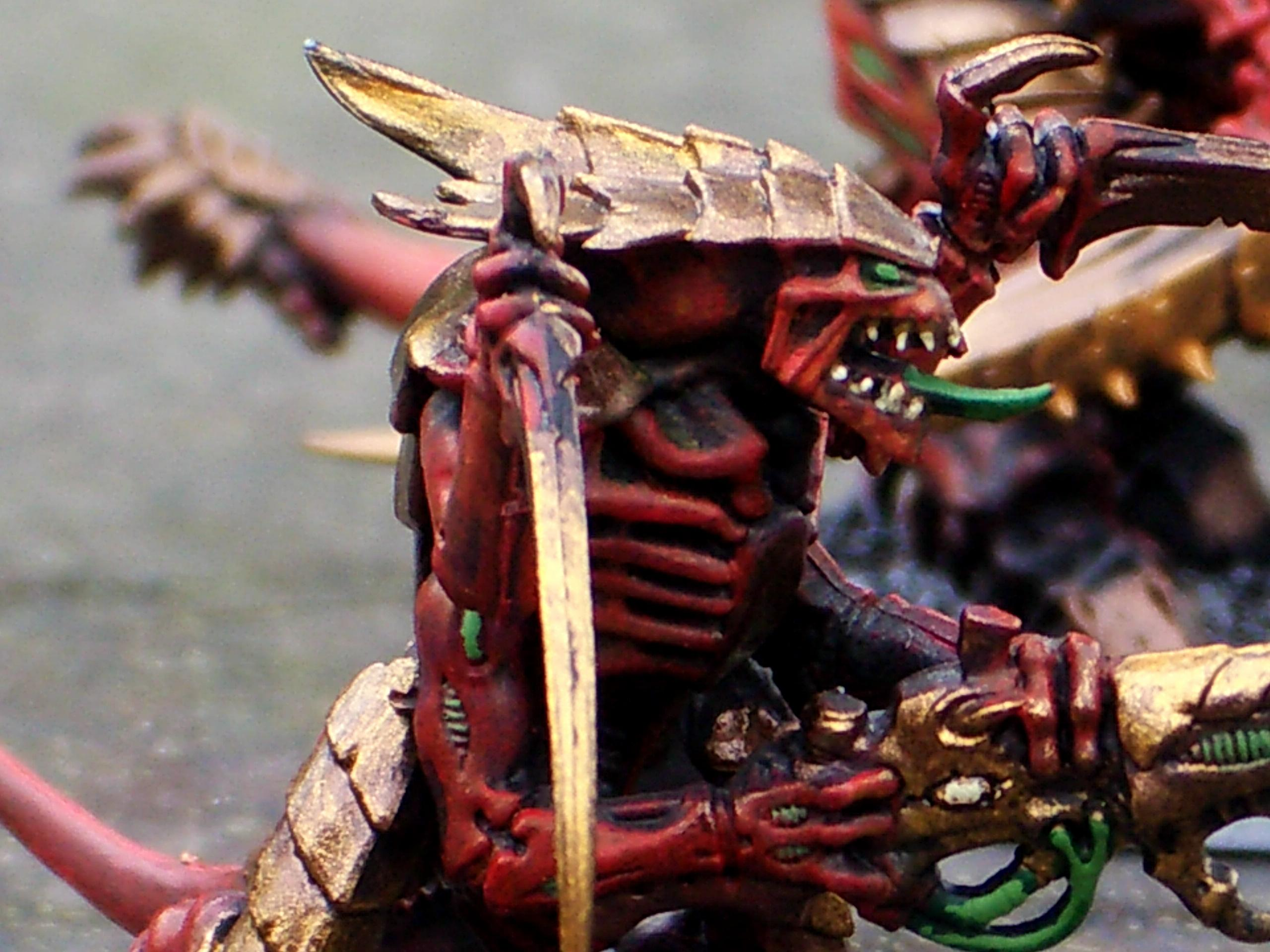 Tyranid Warriors, Close up