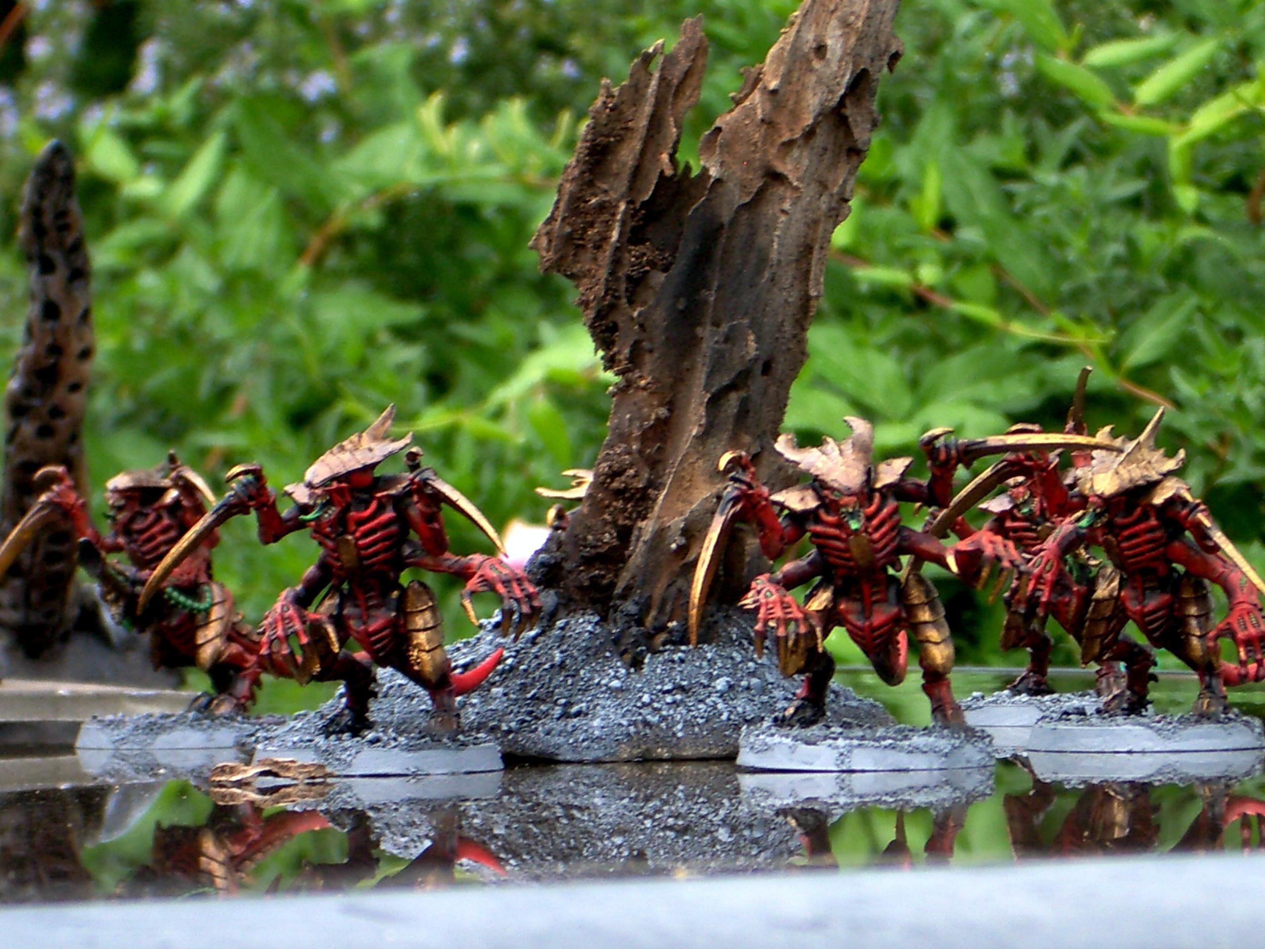 Tyranids Warriors Carnifax Bugs