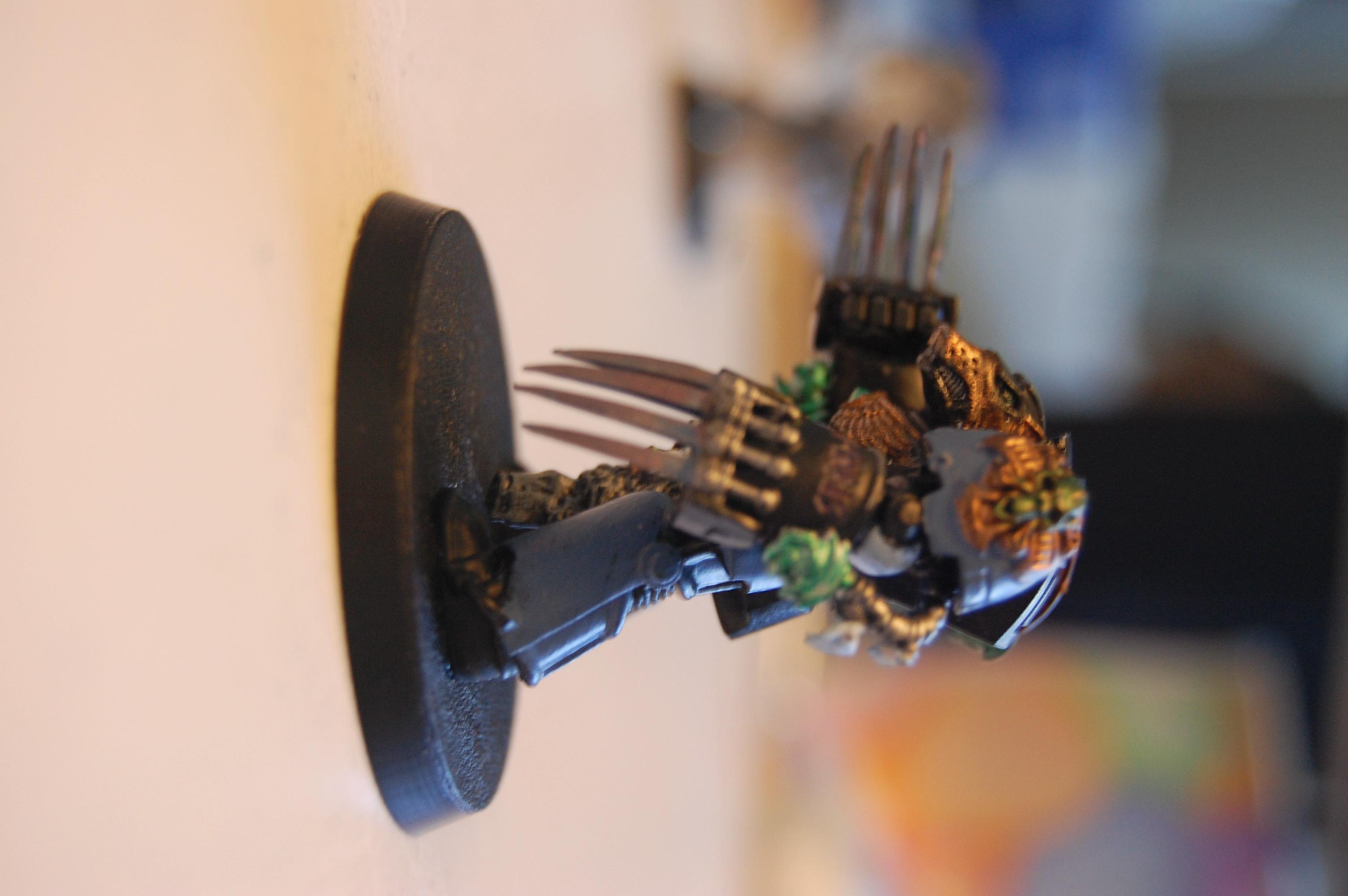 Lone Wolf, Space Wolves, Spartan5150