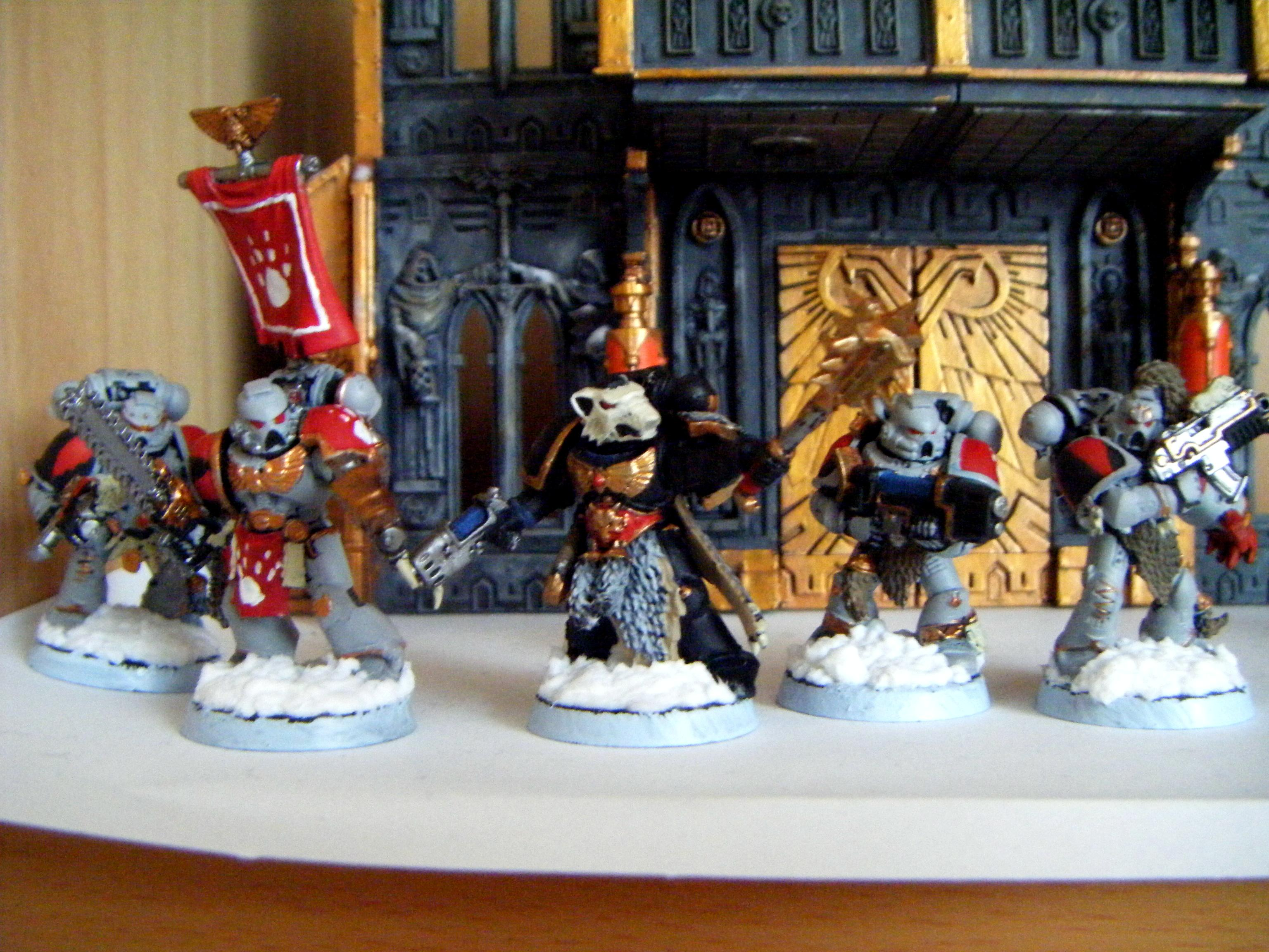 Grey Hunters, Snow Bases, Space Wolves, Wolf Priest