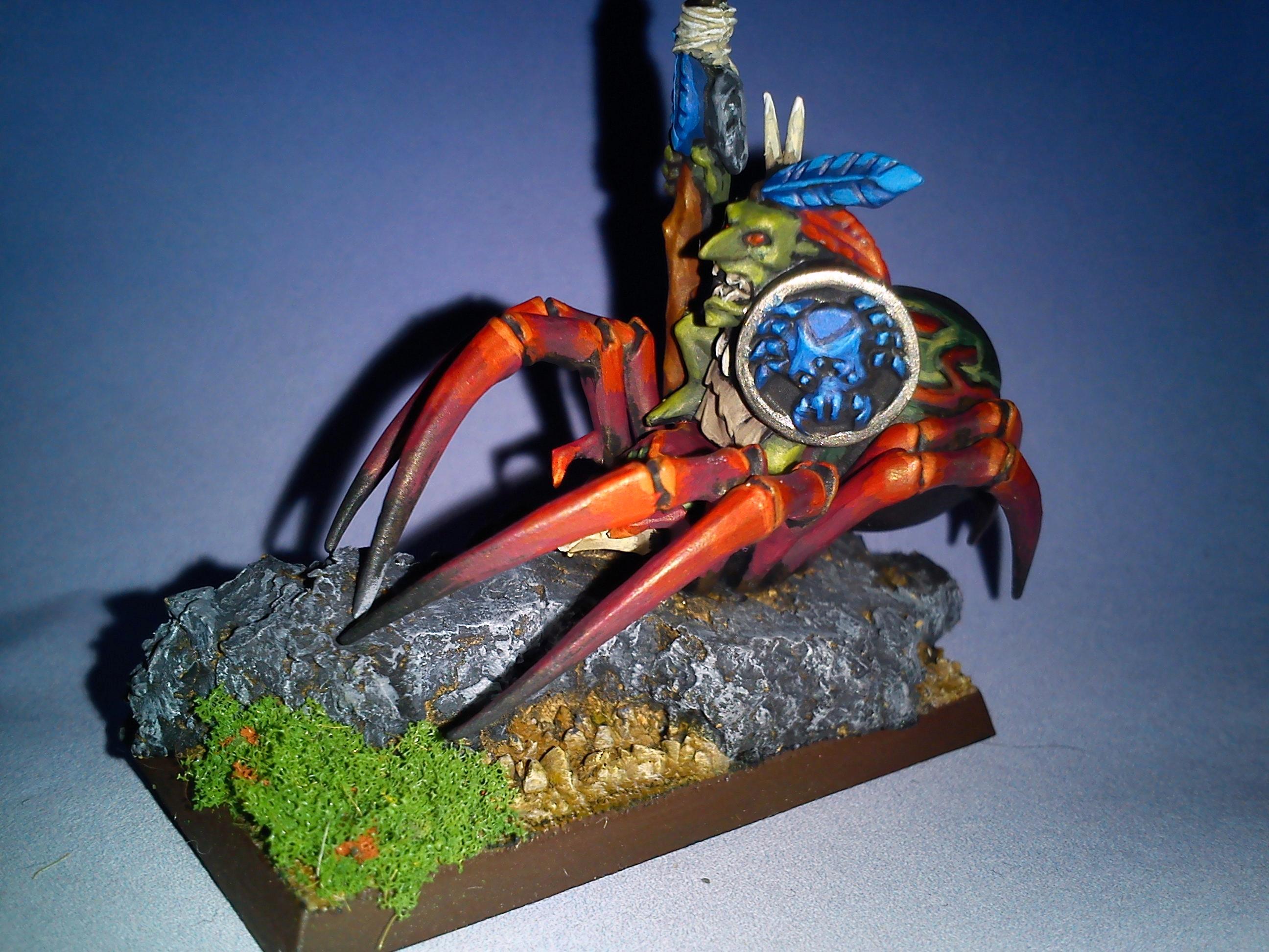 #1 Spider Rider
