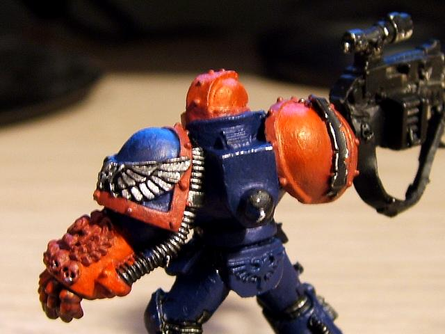 Crimson Fists Sternguard Back