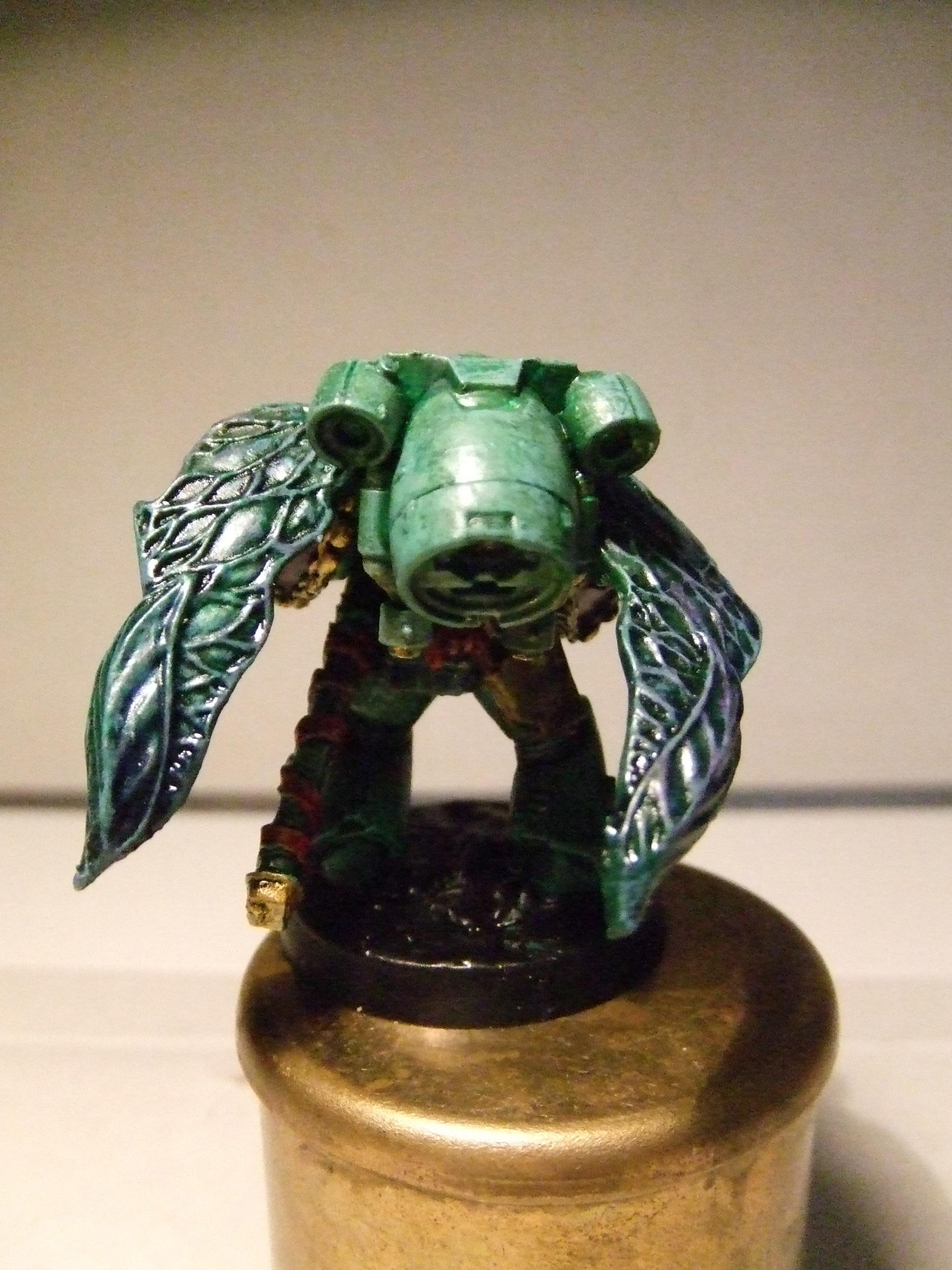 Assault, Insect Wings, Space Marines