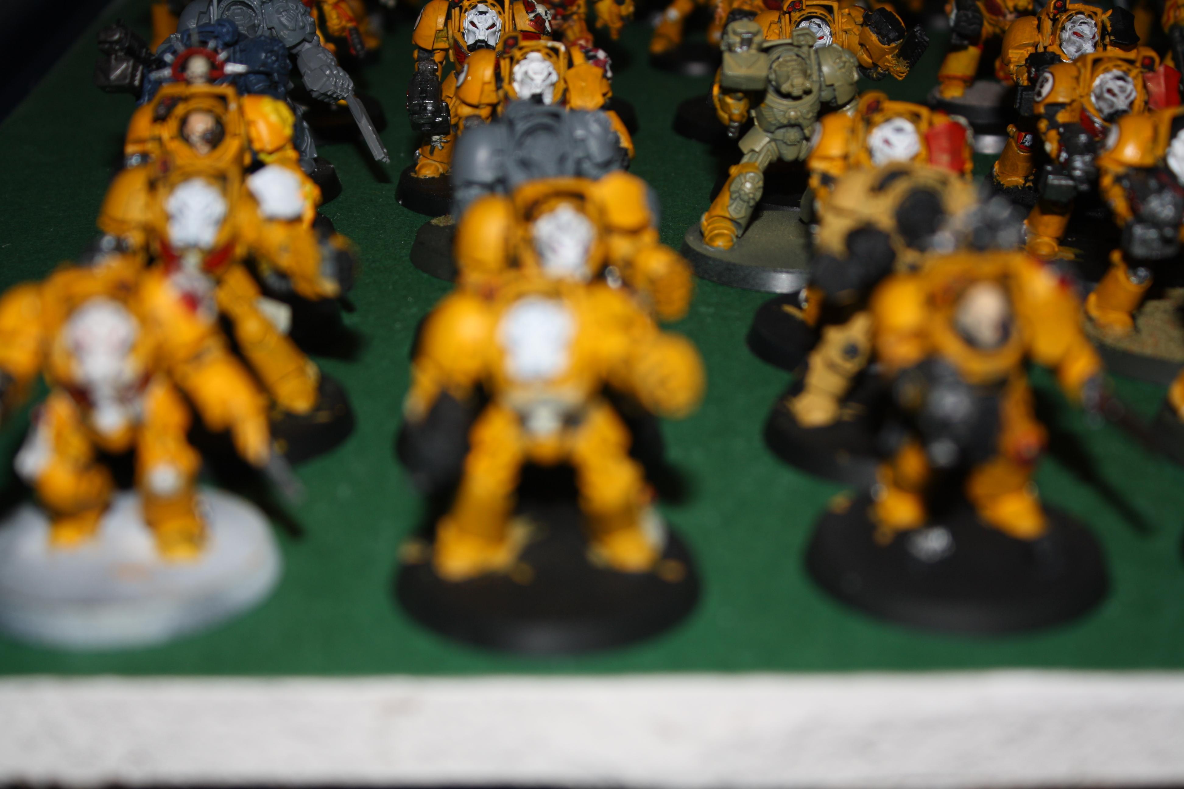 Pip, Space Marines, Terminator Armor, Warhammer 40,000, Whole Army