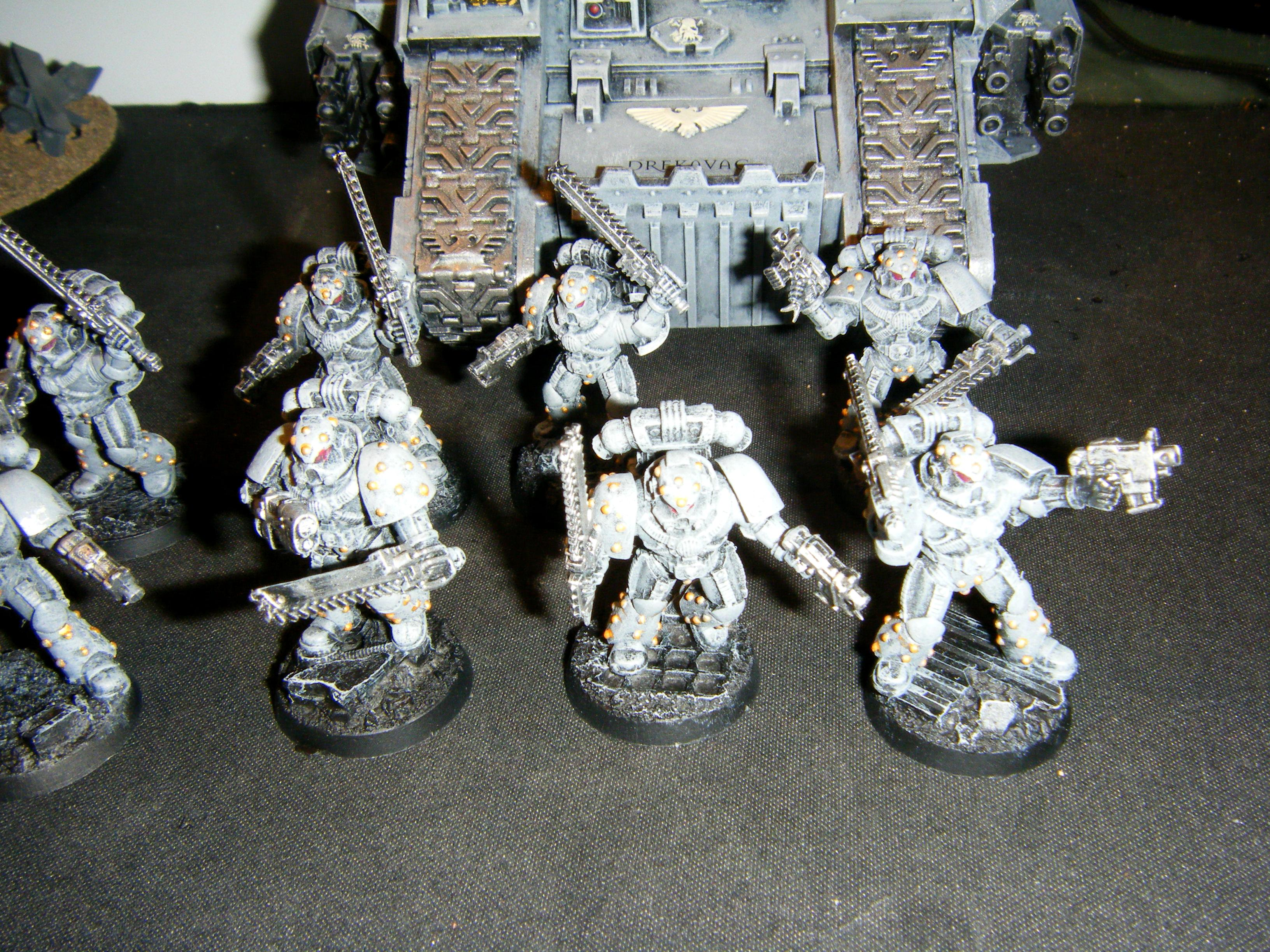 Carcharodons, Space Marines, Tactical