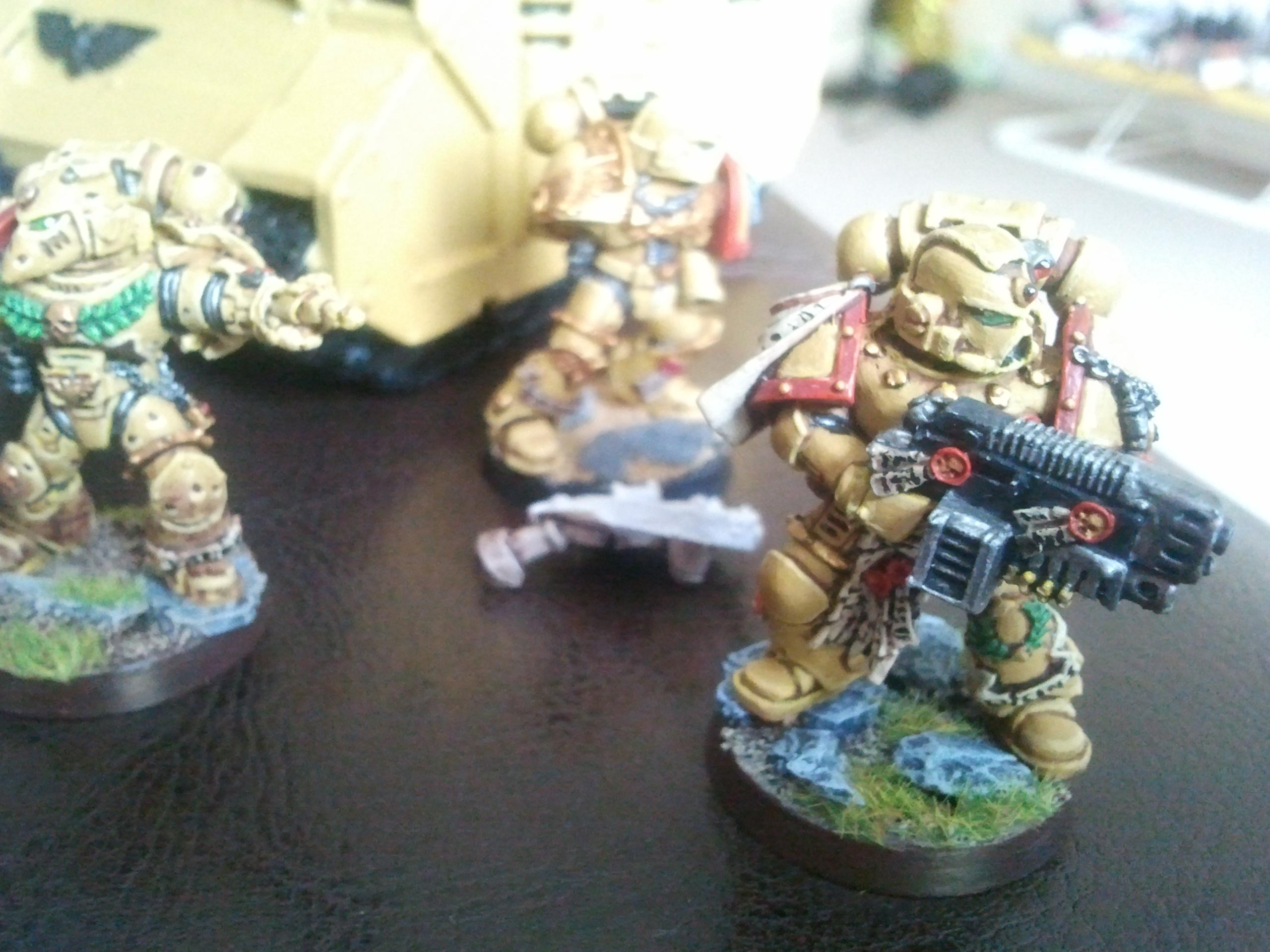 Space Marines, Sternguard Vetrans