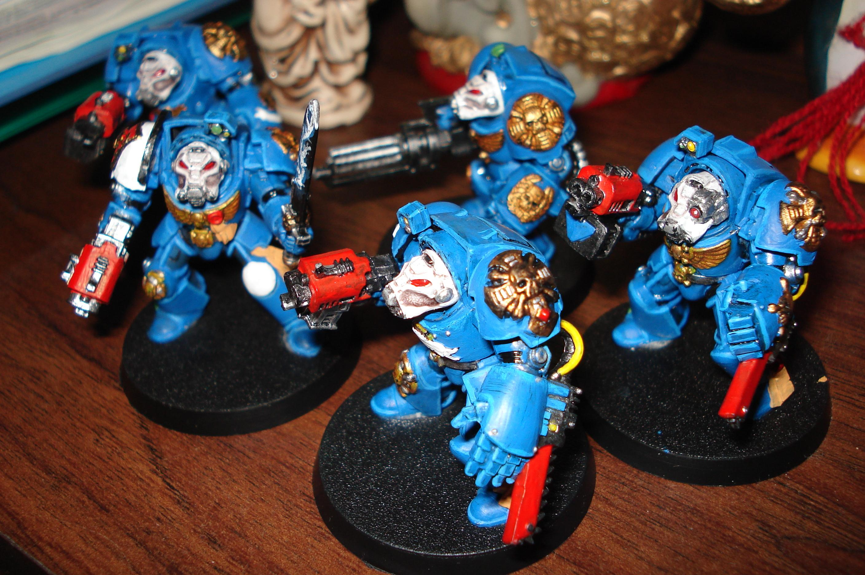 Terminator Squad, Work In Progress