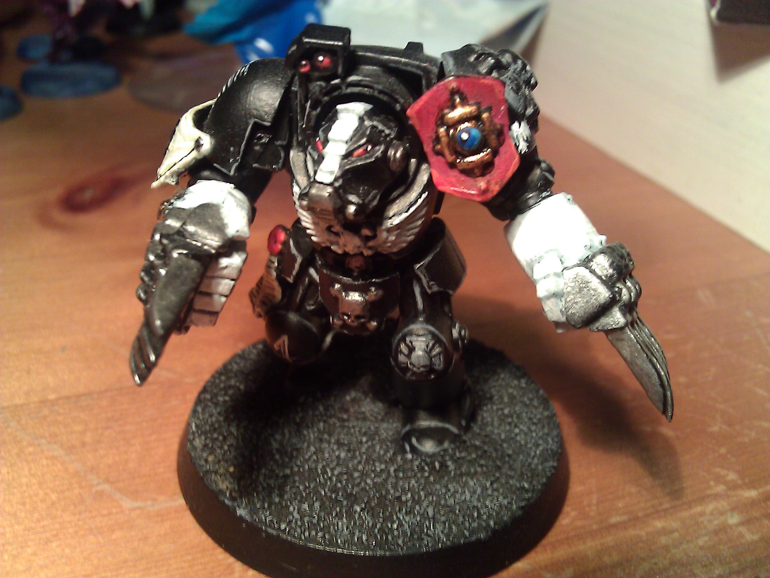 Lightning Claw Termie - Raven Guard