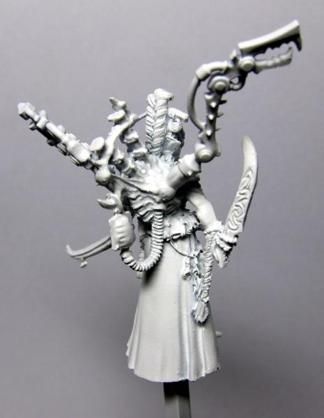 Conversion, Dark Eldar, Haemonculus