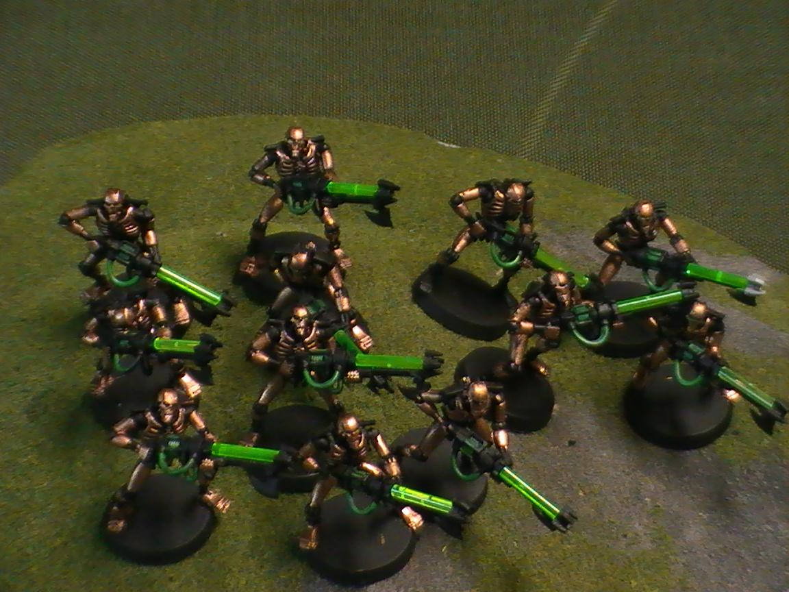 Necrons, Warriors of the Sunoccard Dynasty